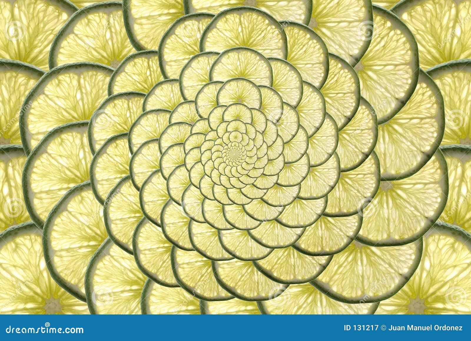 Nieskończona owoców cytrusowych