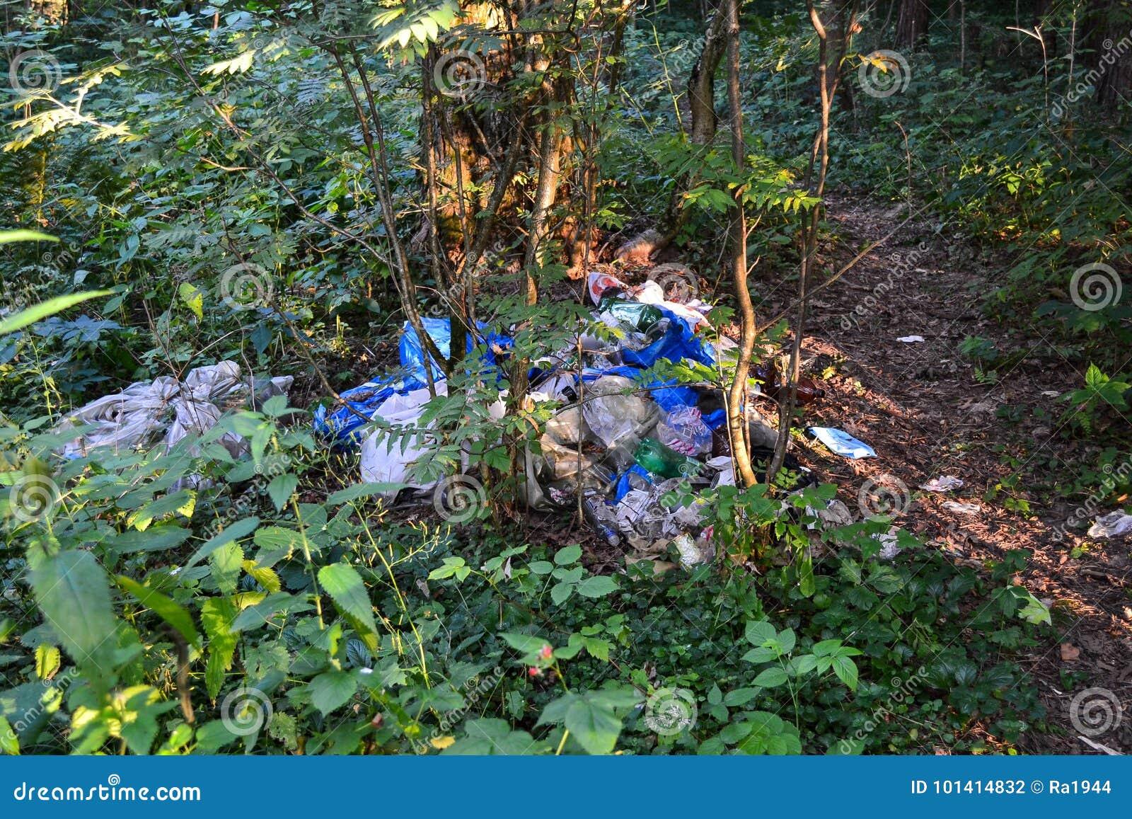 Nieupoważniony wysypisko w lasowym zanieczyszczeniu natura ekologia zła