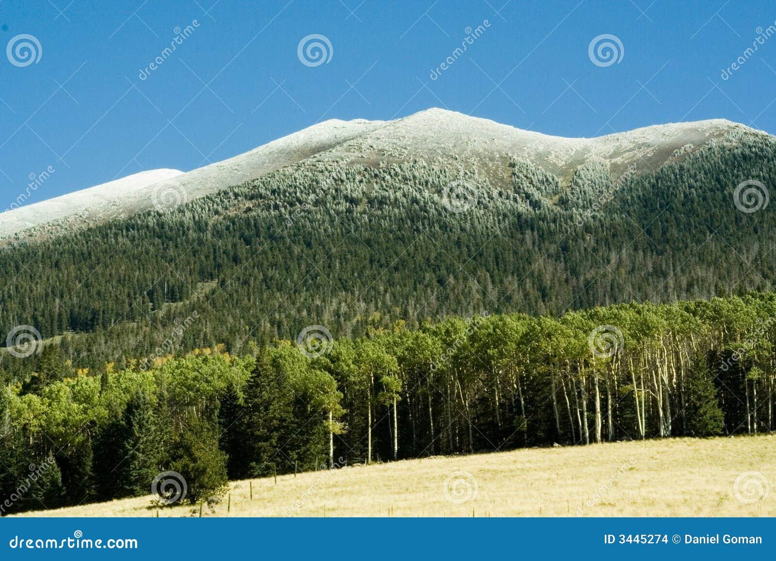 Nieve de la montaña