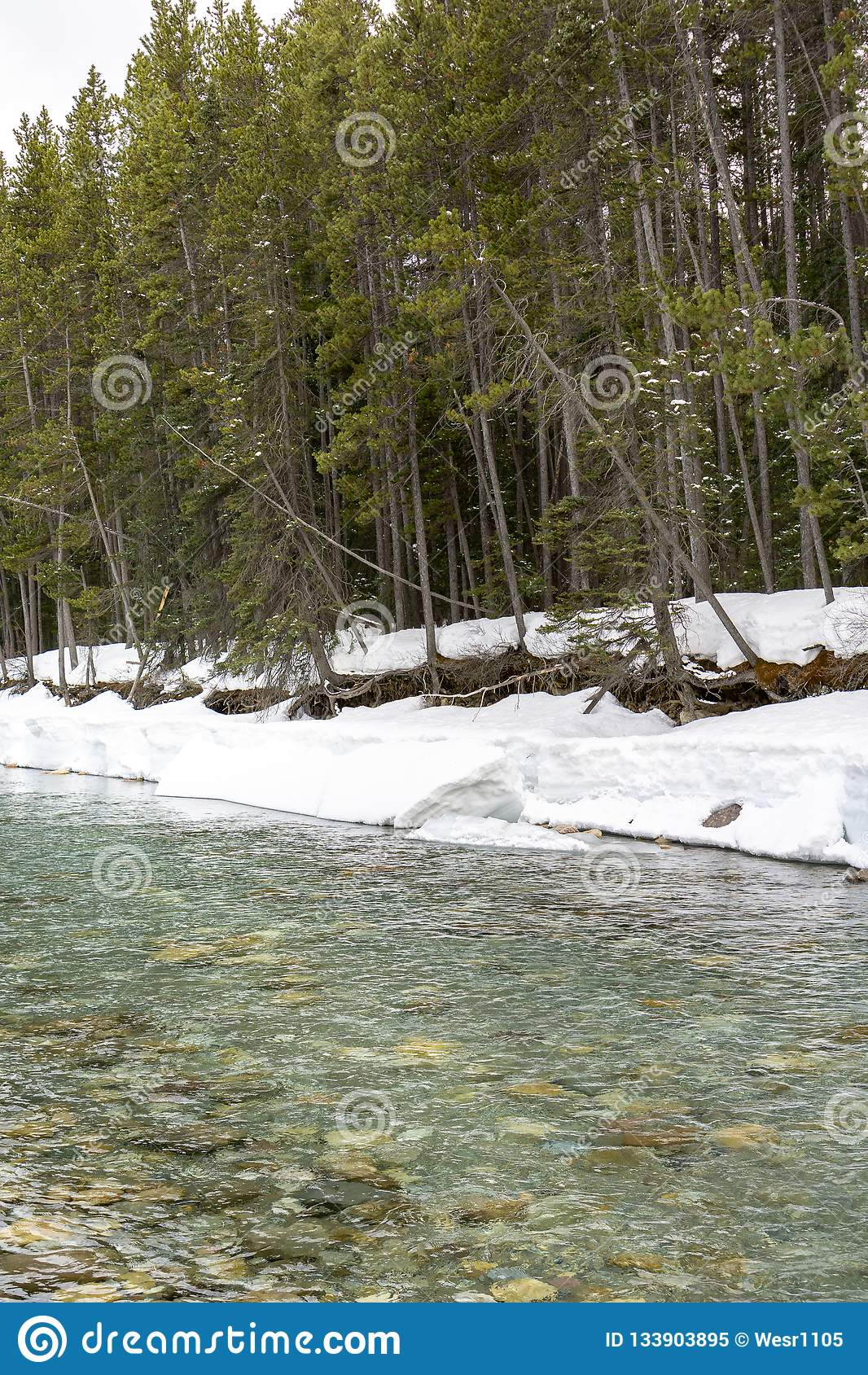 Nieve en riverbank