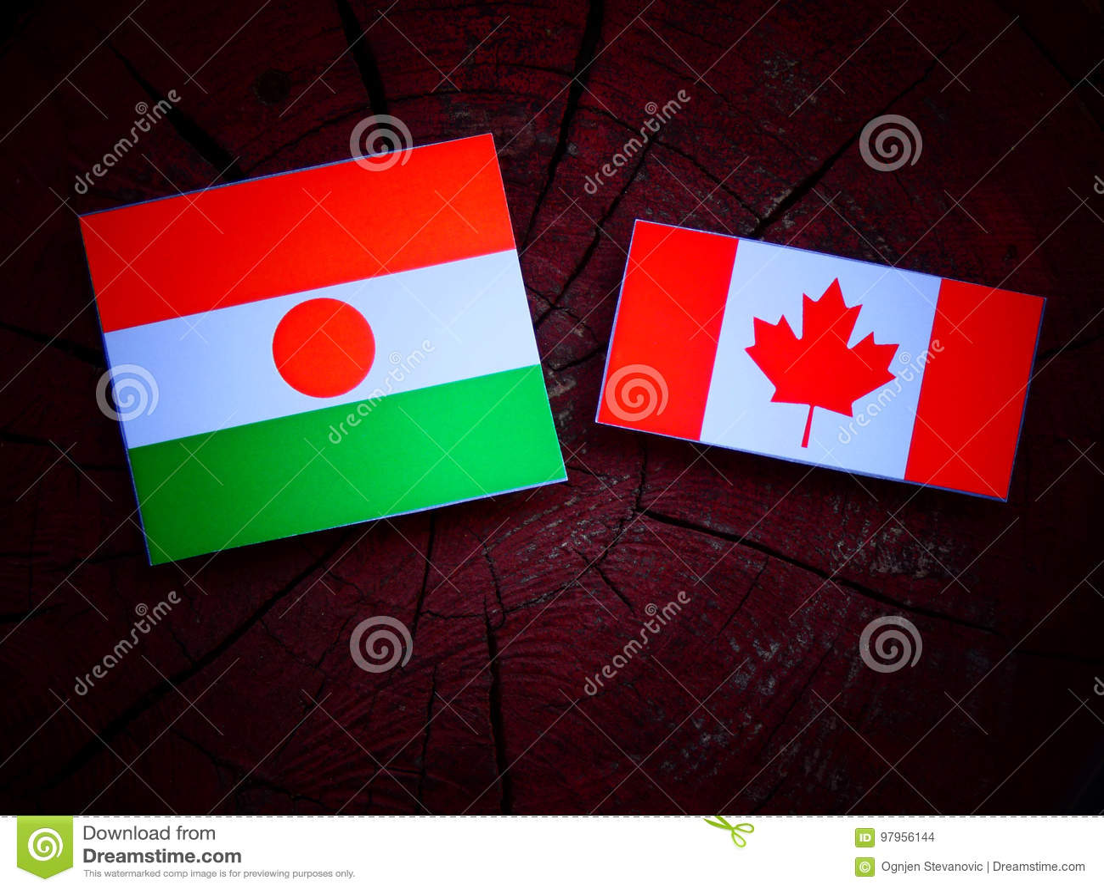 Niger flaga z kanadyjczyk flaga na drzewnym fiszorku odizolowywającym