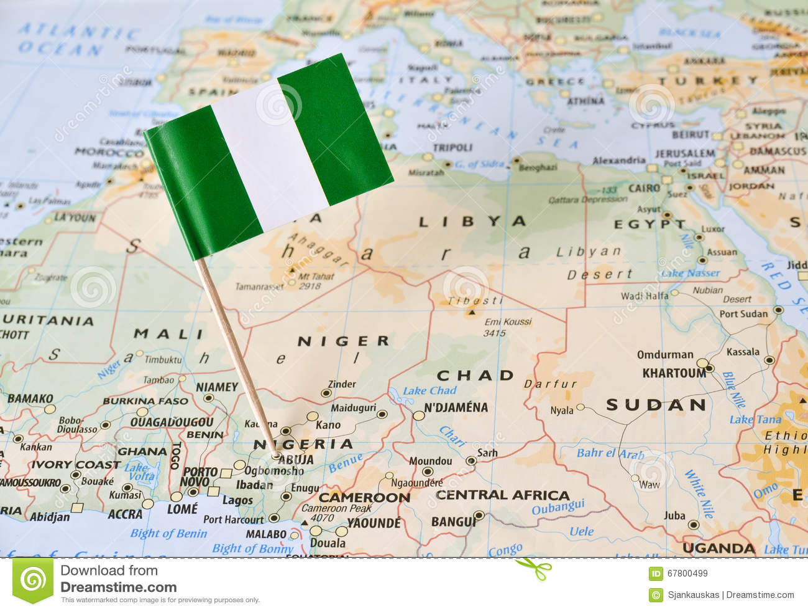 Nigeria-Flaggenstift von der Karte