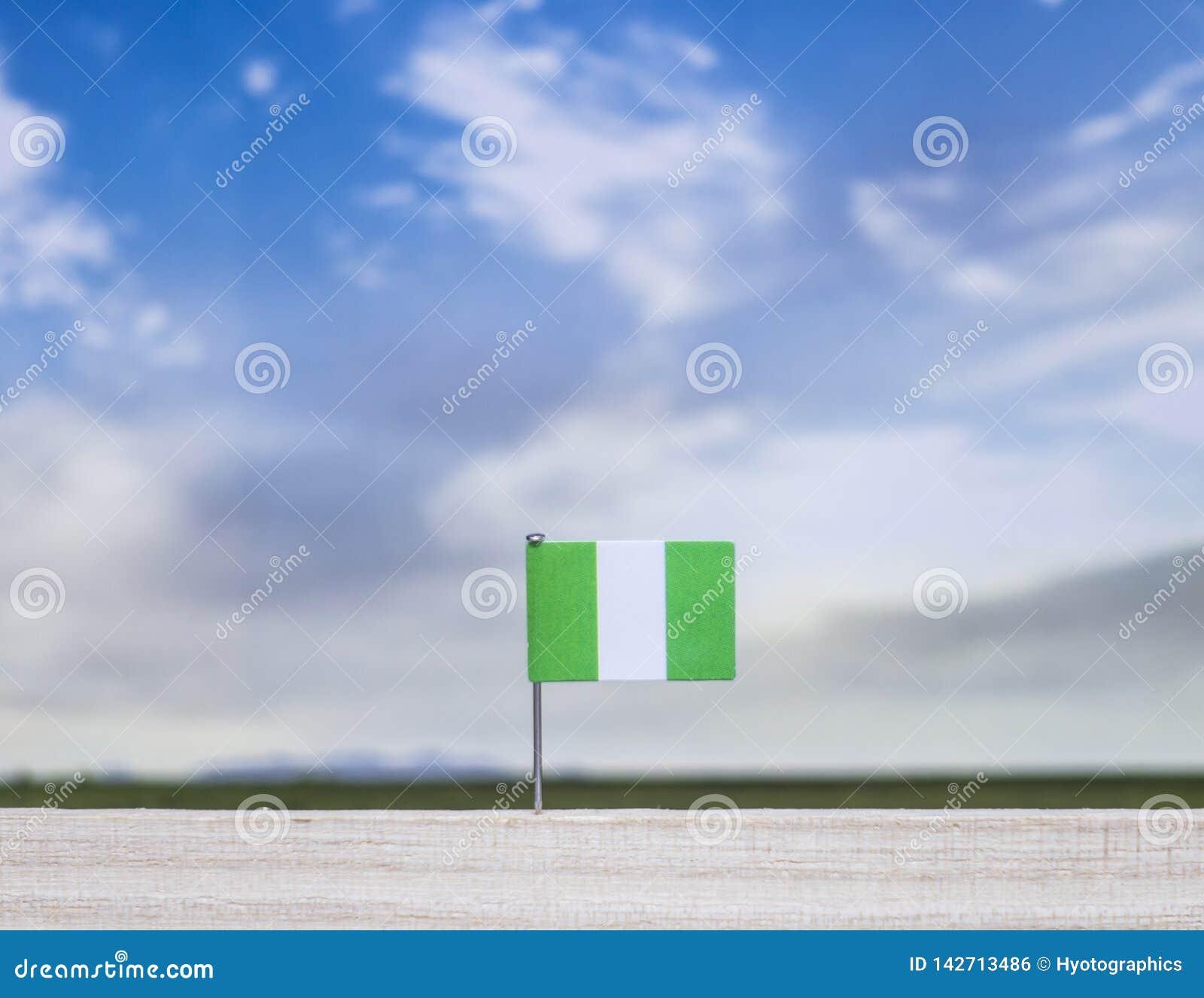 Nigerische Flagge mit beträchtlicher Wiese und blauer Himmel hinter ihm