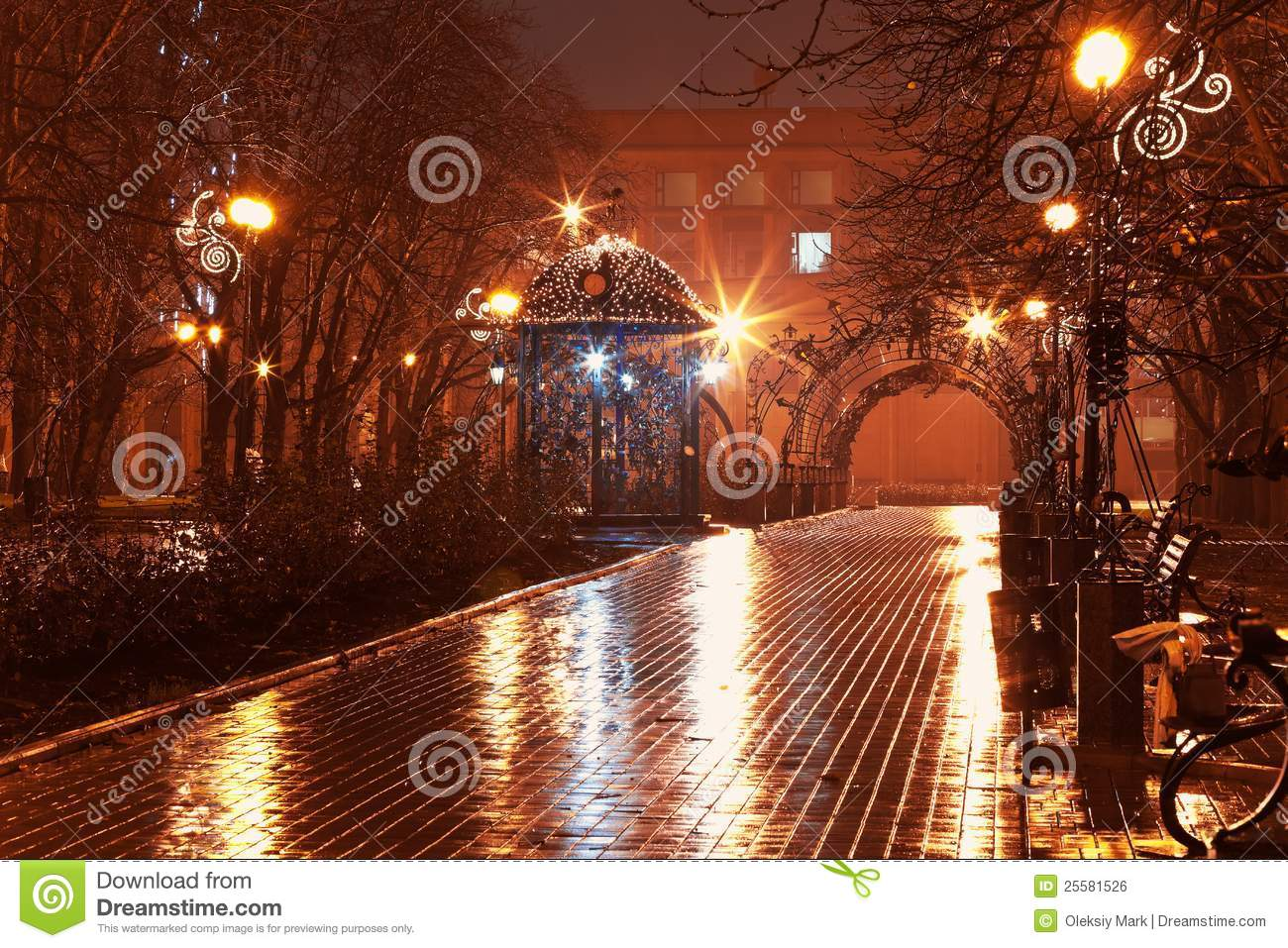 Download Night Alley In The City Park Stock Photo - Image of decorated, garden: 25581526