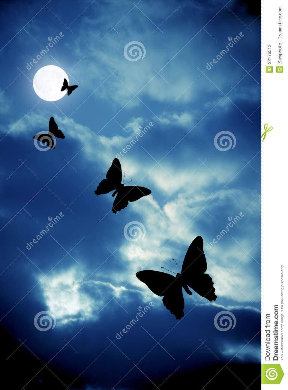 night butterflies stock photo image of animal silhouette