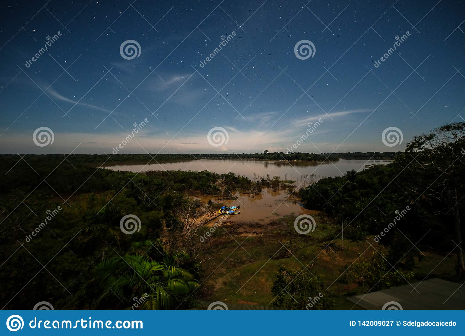 A night full of stars in the Brazilian Amazon