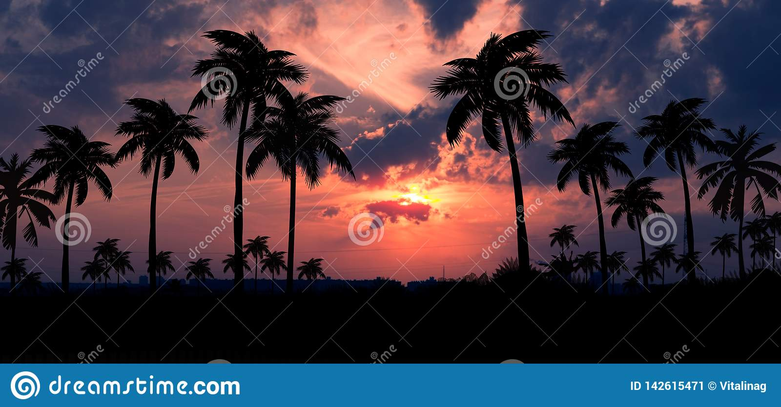 Night landscape with stars, sunset, stars. Silhouette coconut palm trees