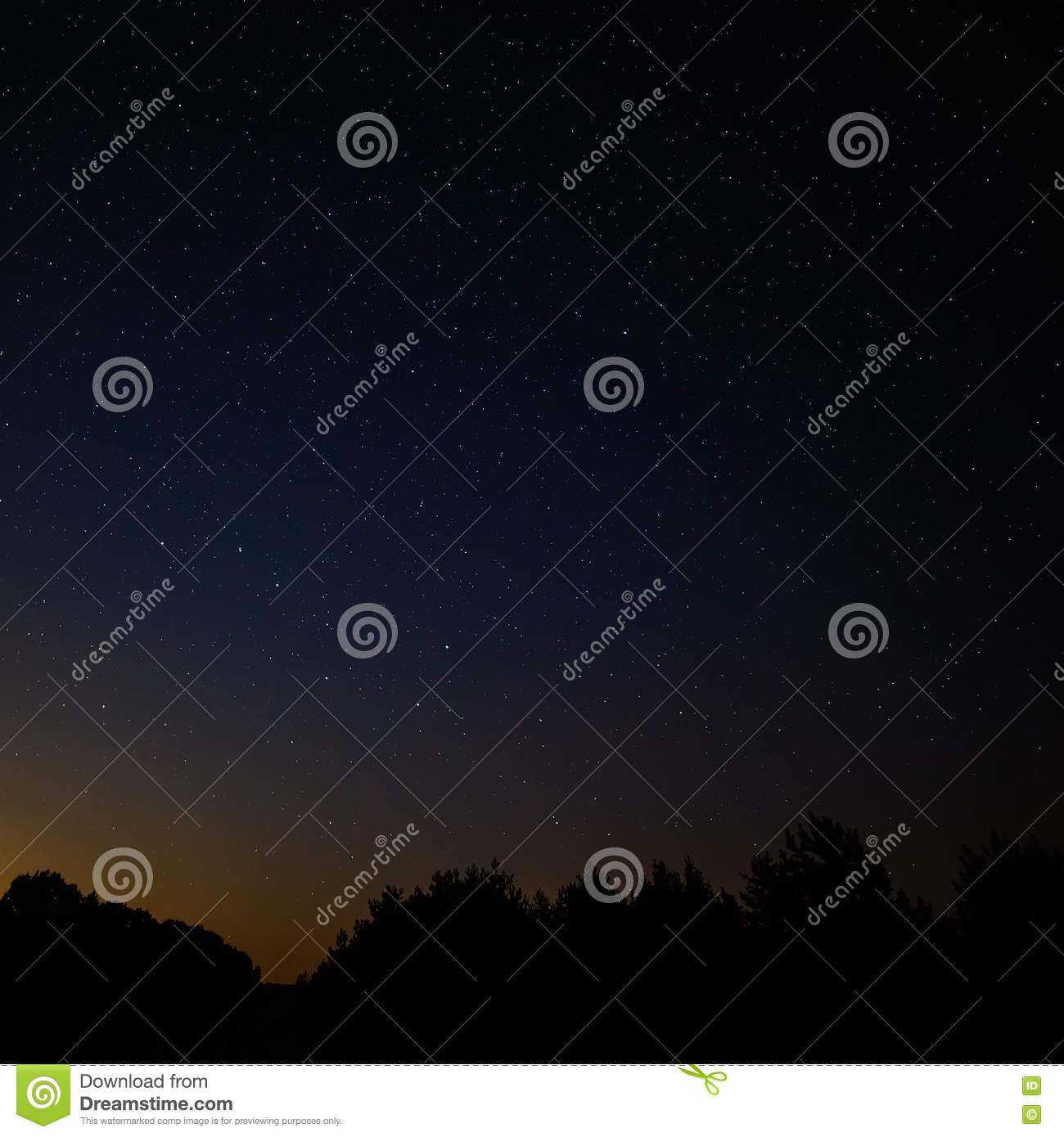 Night sky with bright stars. Against the background of tree crow