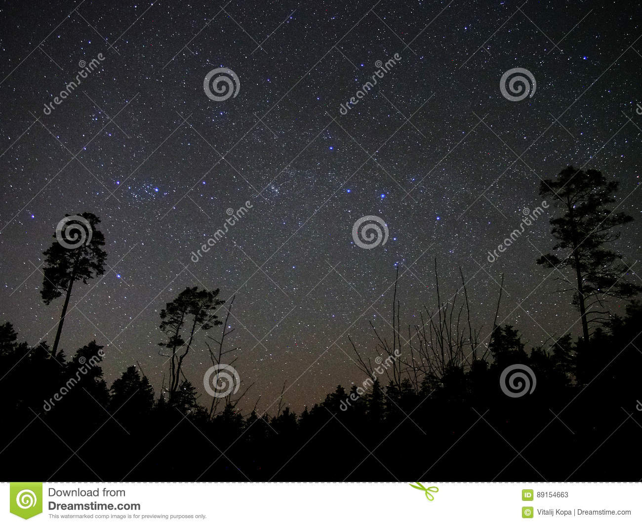 Universe stars night sky forest perseus cassiopeia constellation
