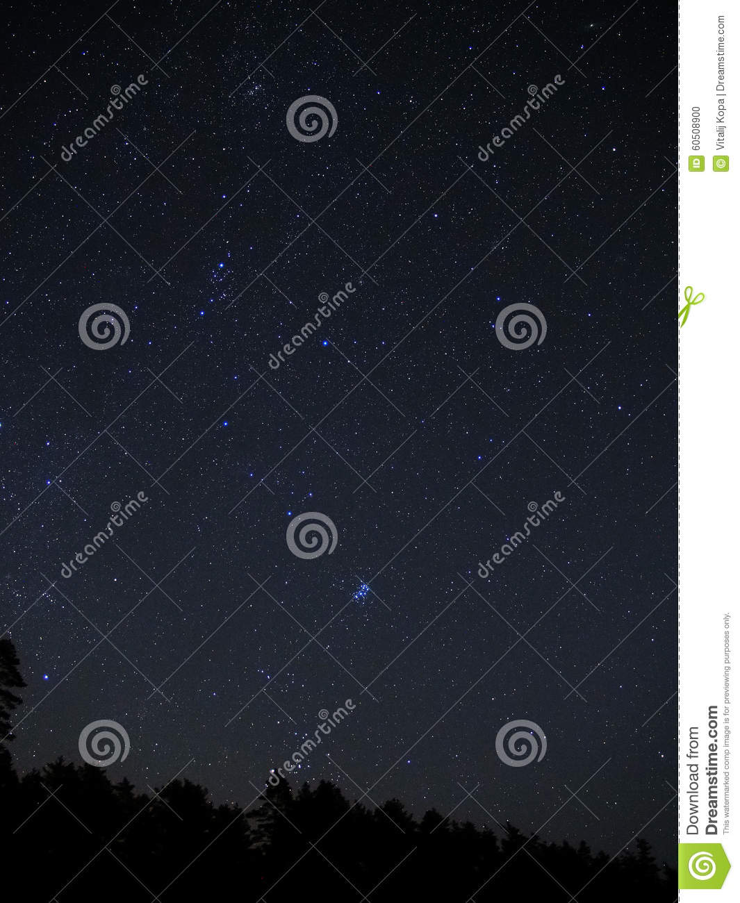 Night sky stars and Pleiades cluster M45 over forest