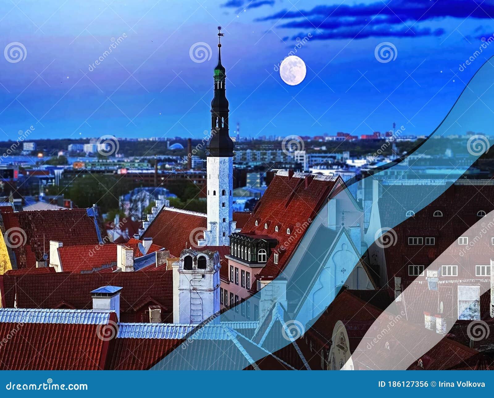 Estonian Flag Landscape