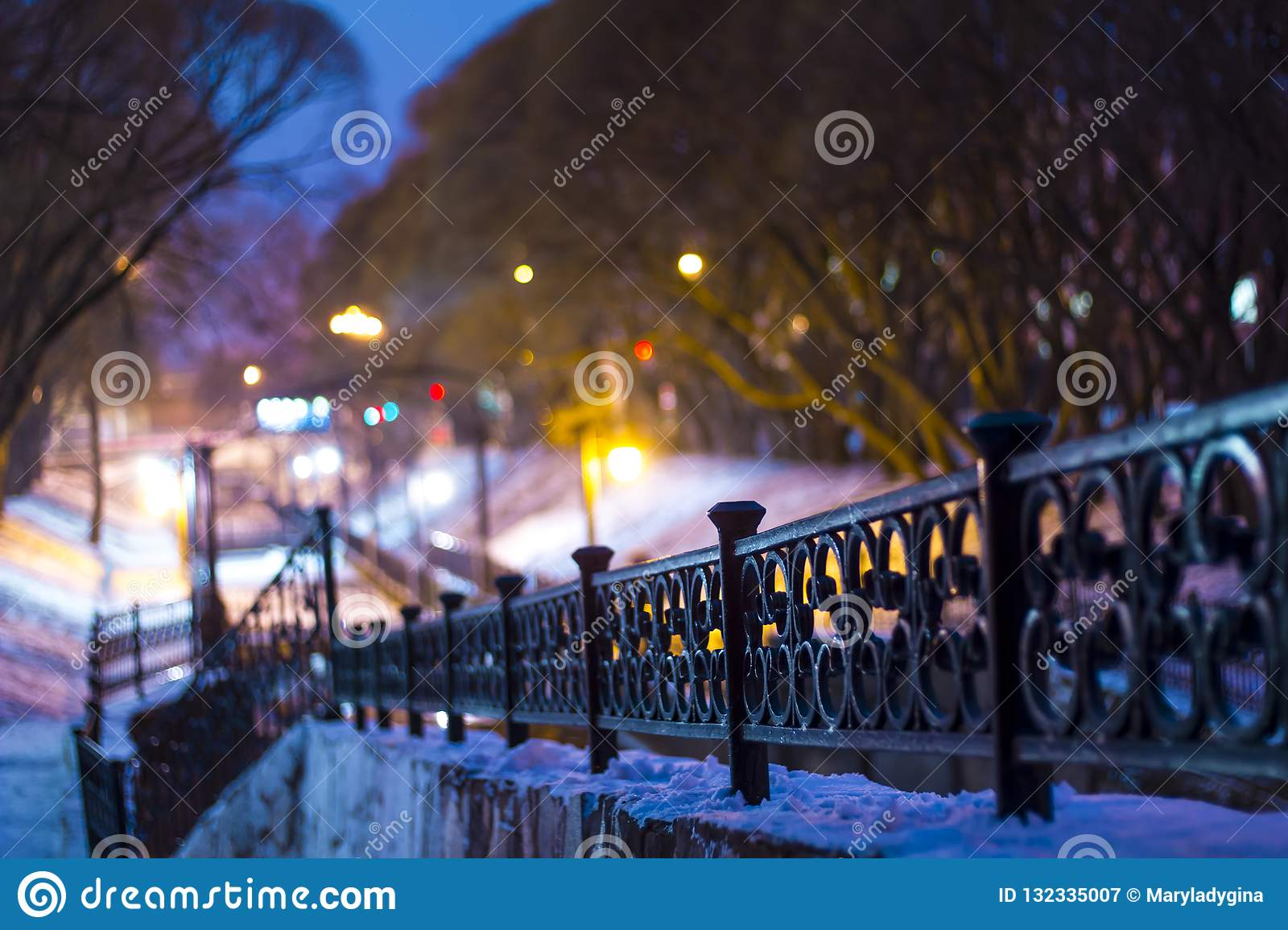 Night winter landscape in the city park. Bridge over the river. Park lights. Willows. Cast iron railings