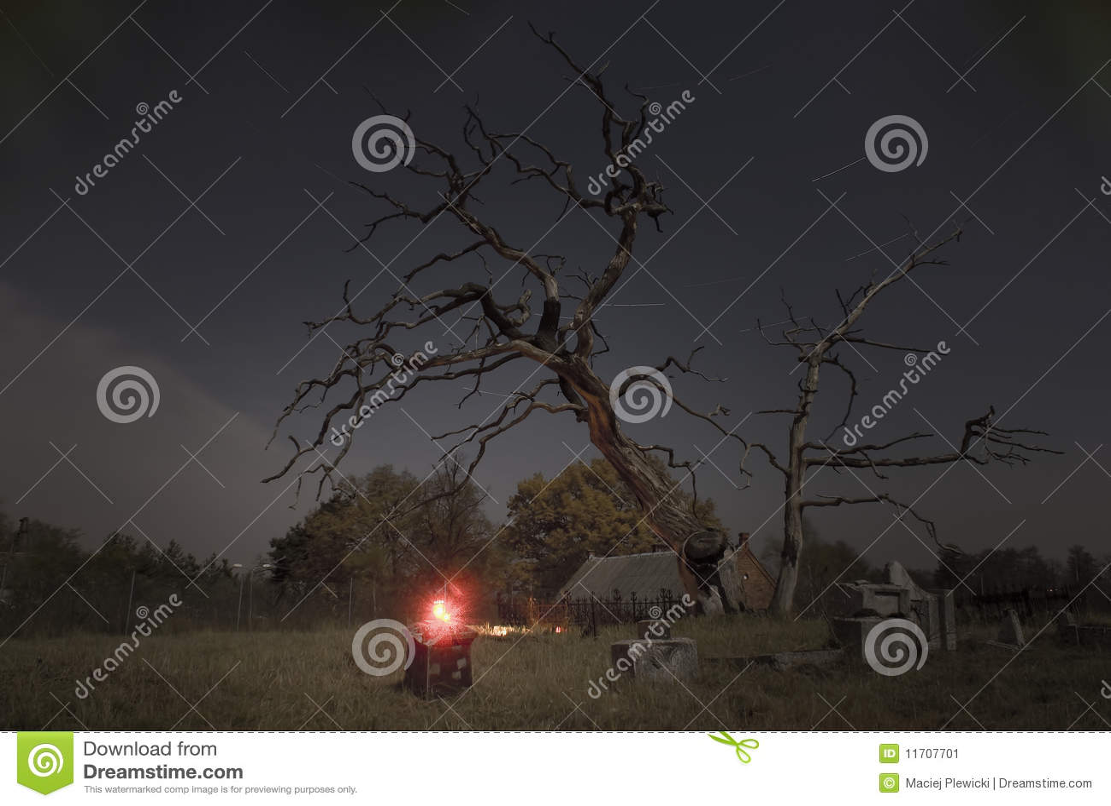 Nightshot on cemetery