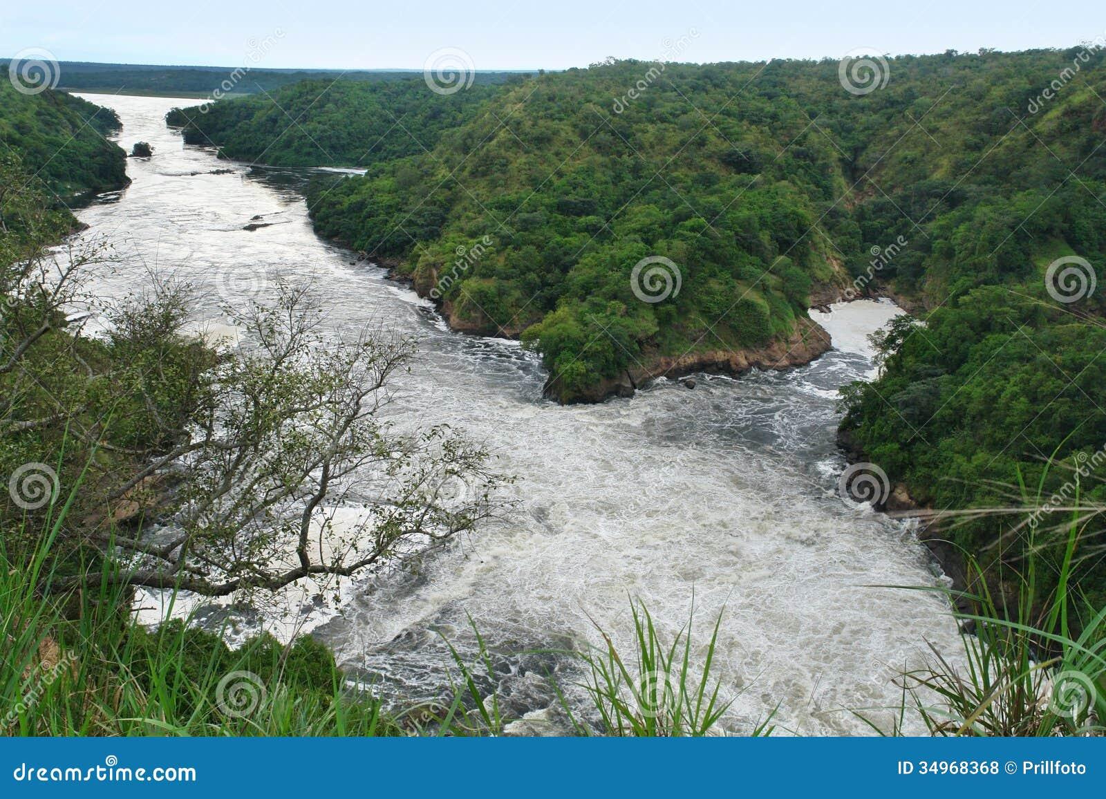 Nilo do rio em torno de Murchison Falls