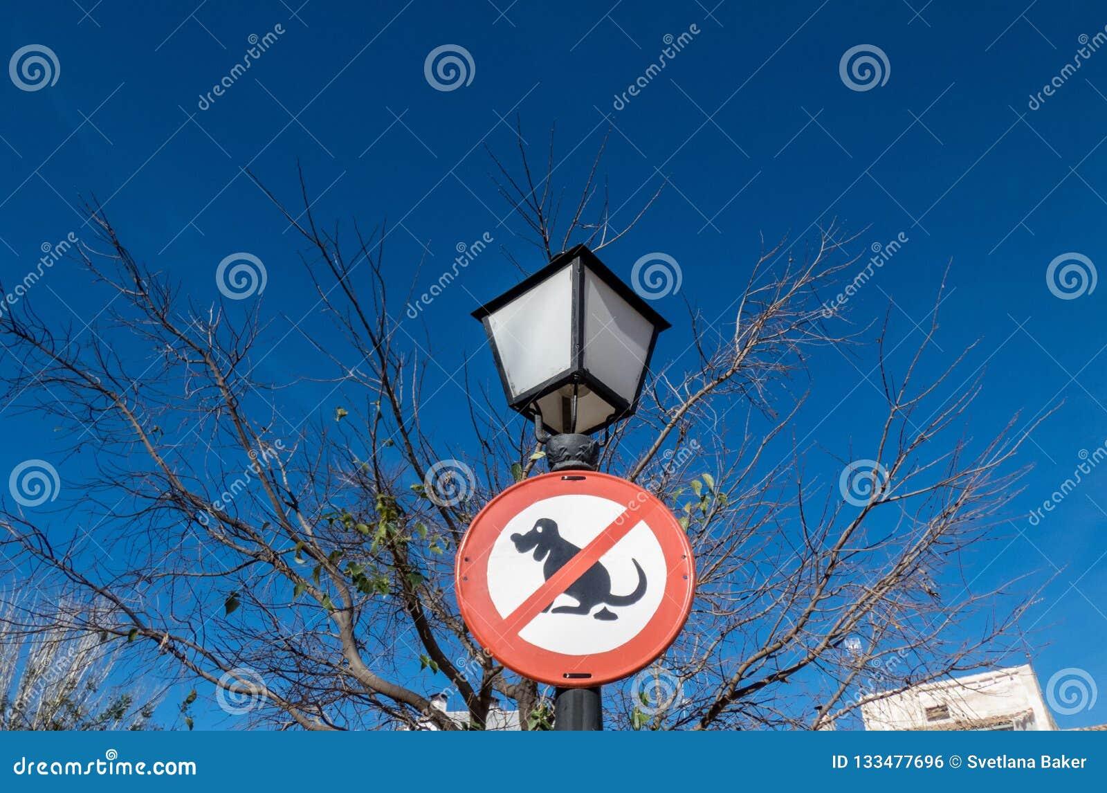 Ninguna muestra del impulso del perro en el poste de la lámpara de calle