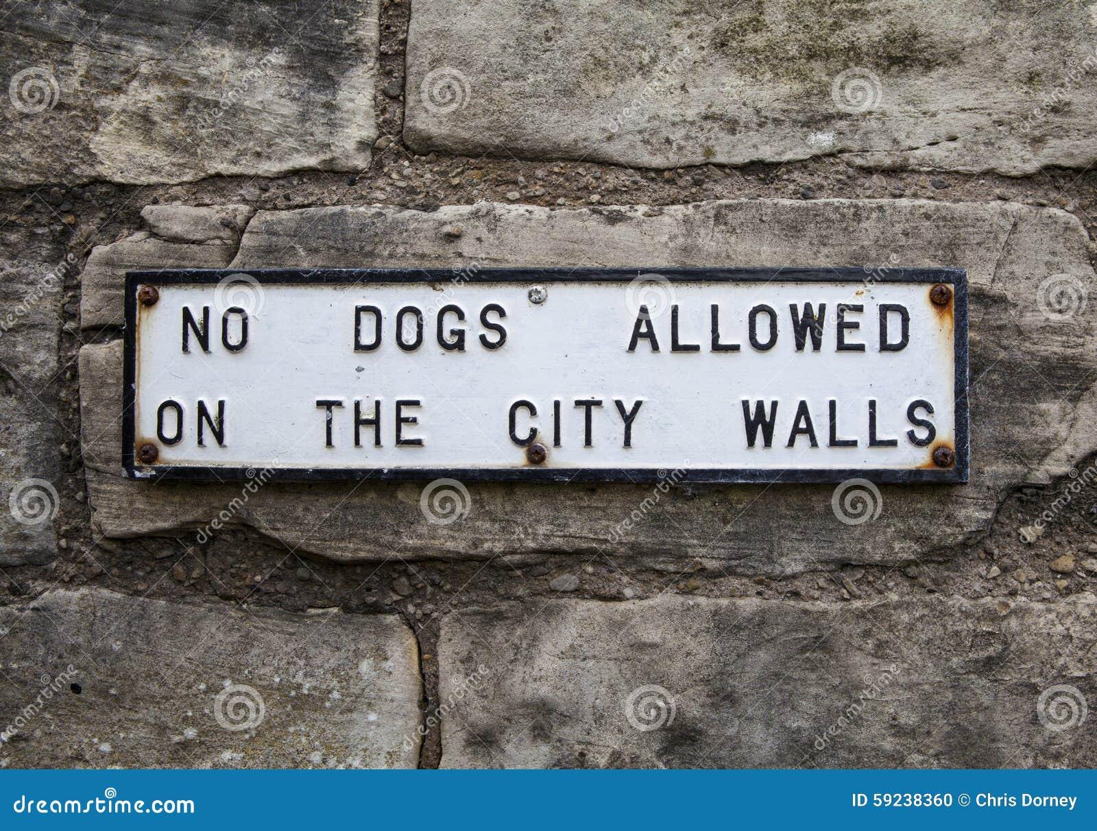 Ningunos perros permitidos en las paredes de la ciudad