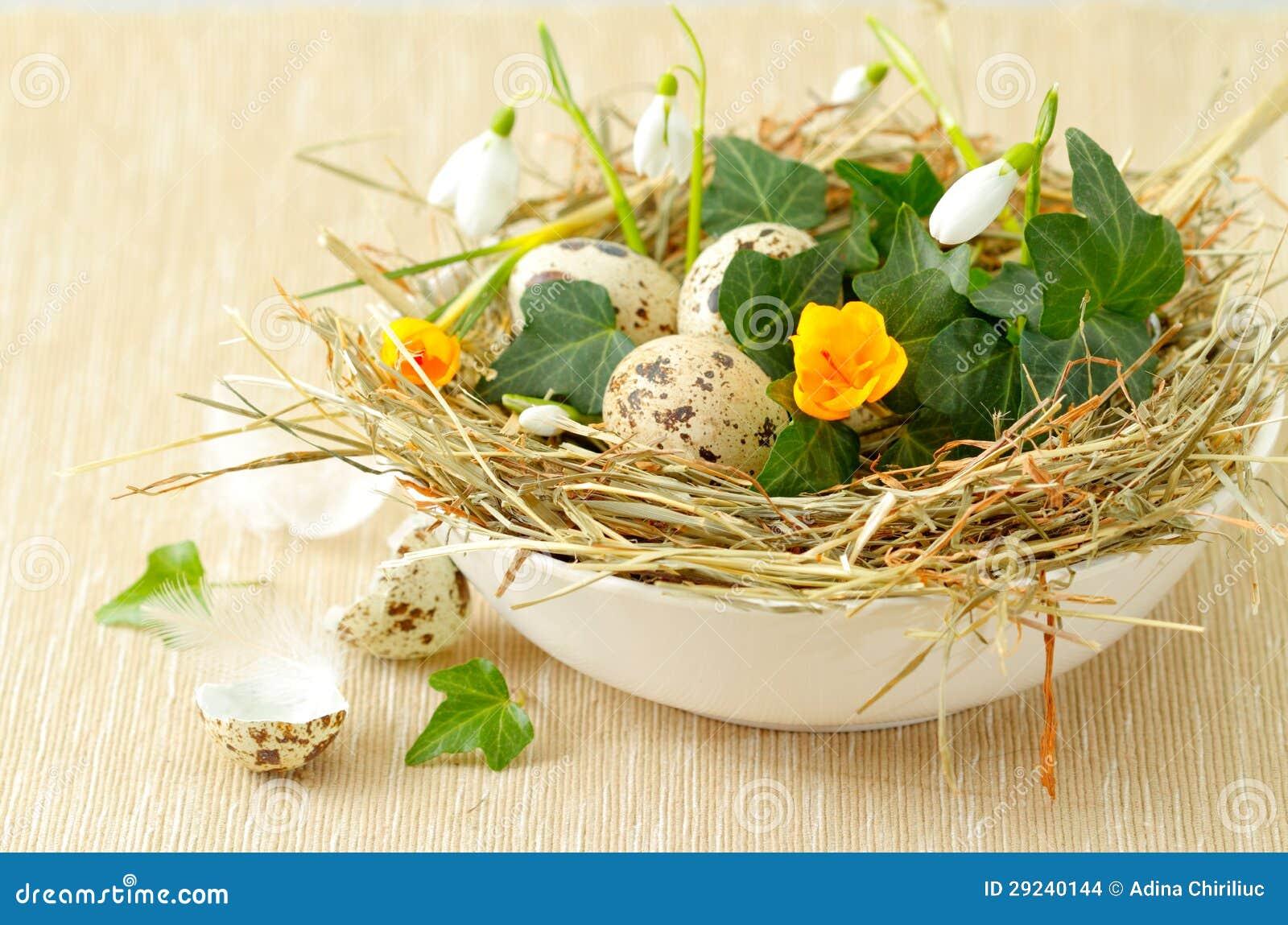 Download Ninho De Easter Com Ovos De Codorniz Foto de Stock - Imagem de eggcup, verde: 29240144