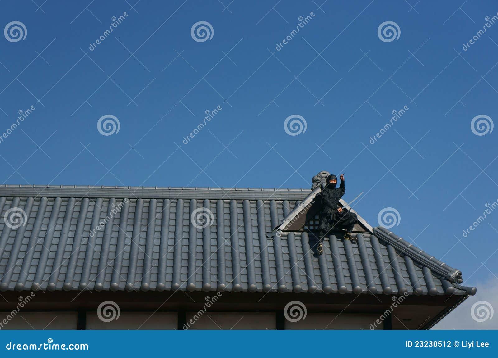 Ninja dach