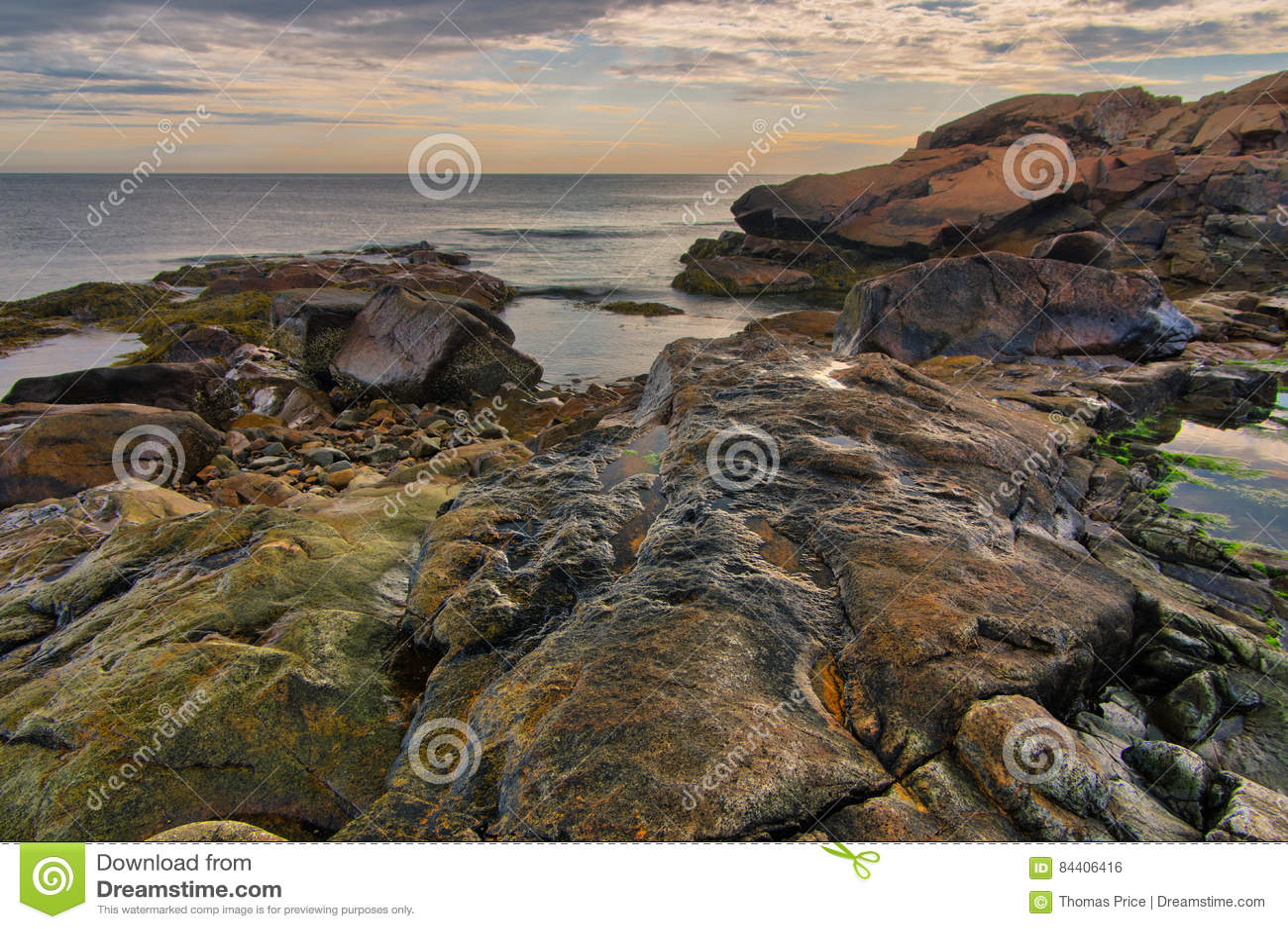 Niski przypływ na skalistej Nowa Anglia linii brzegowej