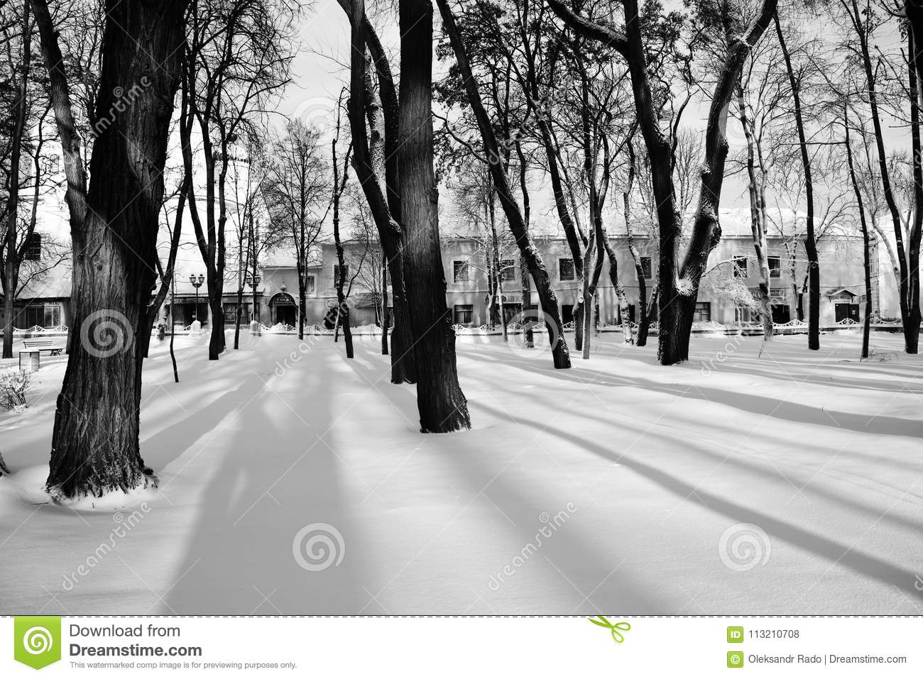 Black white photo nikolai gogol park in nizhyn ukraine covered snow