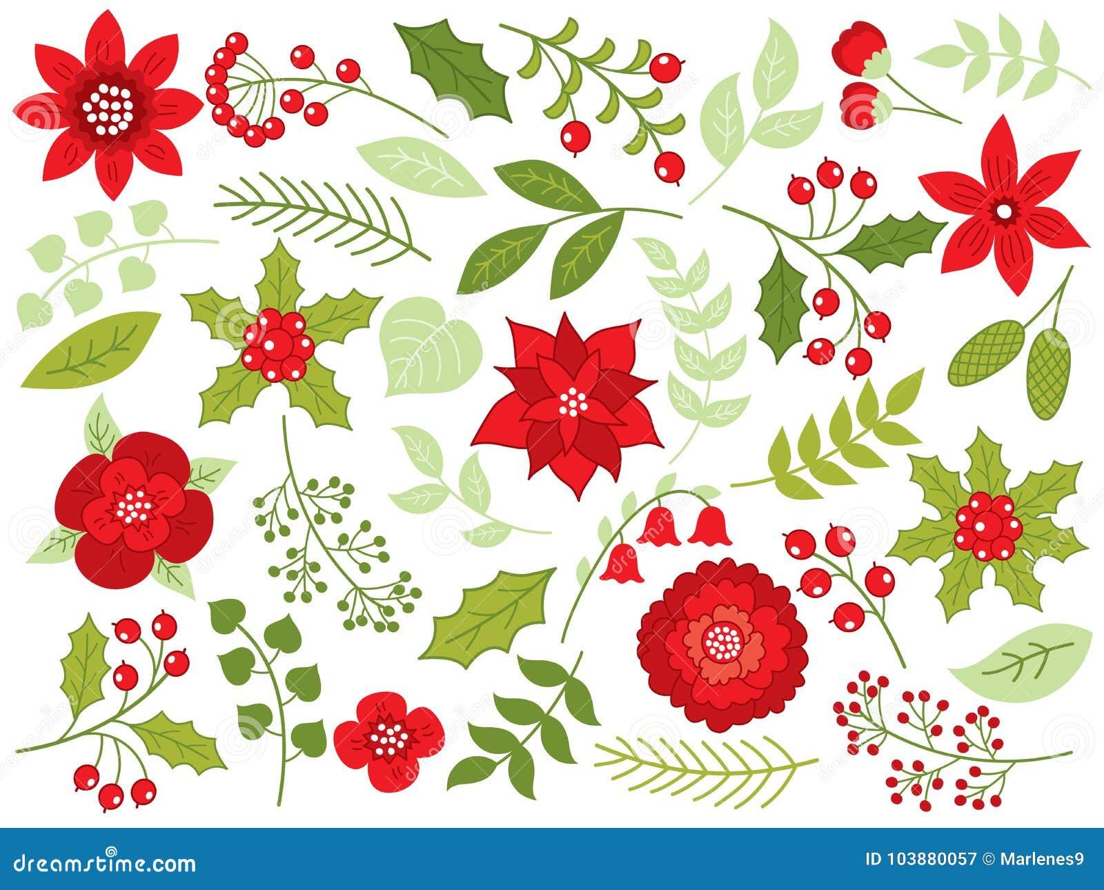 Noël floral de vecteur réglé avec des fleurs, des baies et des feuilles