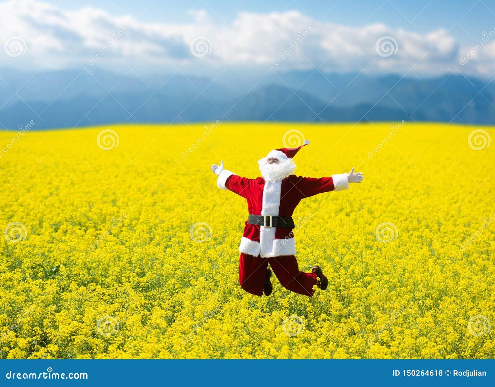 Noël Santa Claus sautant dans le domaine jaune de floraison