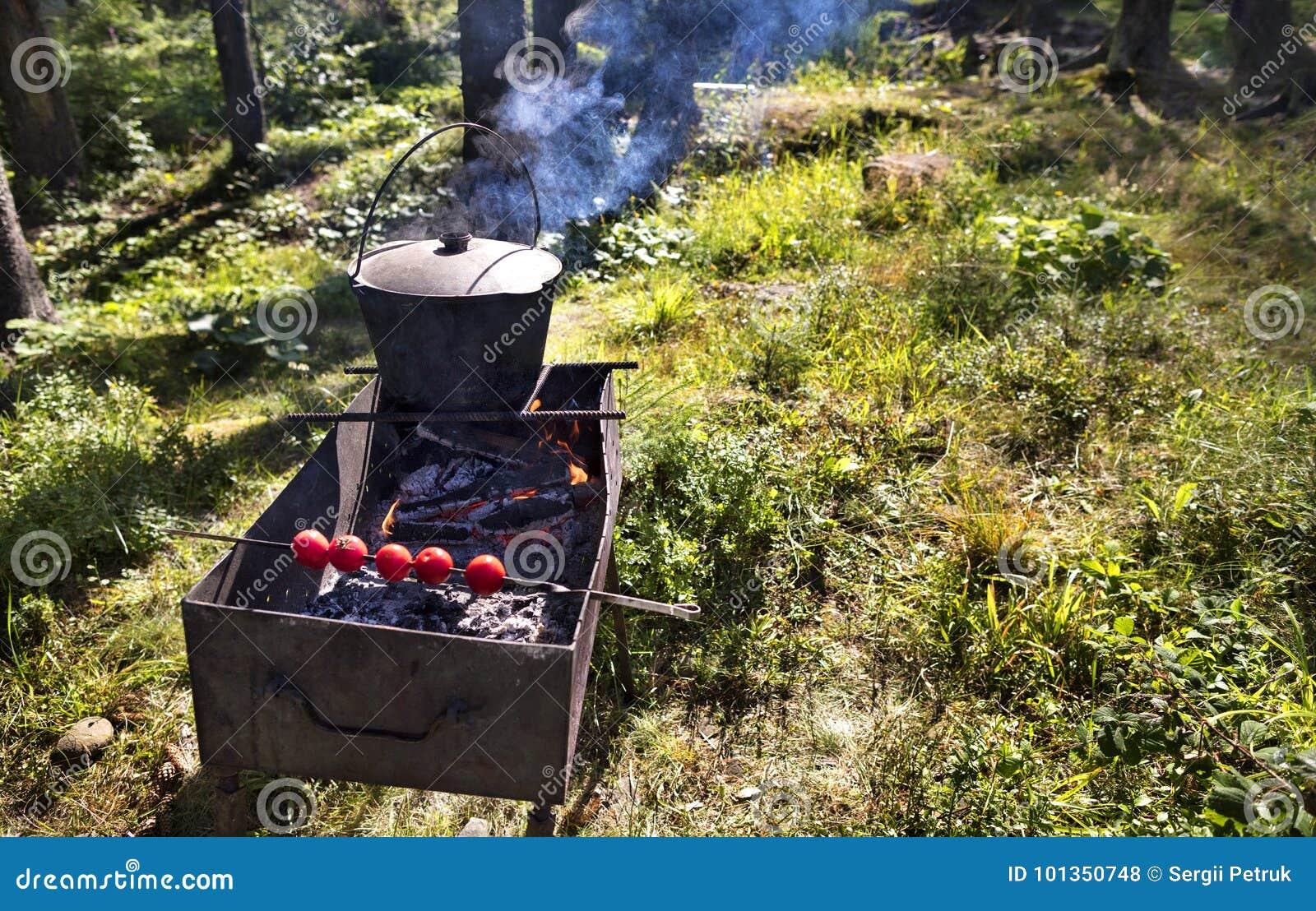 No caldeirão velho no assado que cozinha o papa de aveia contra um esclarecimento da floresta no meio-dia