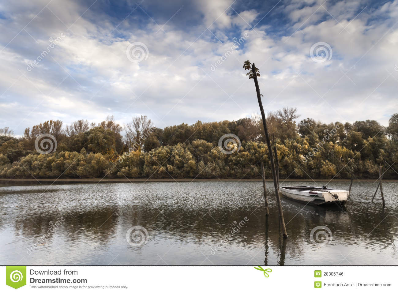 no fish today royalty free stock image image 28306746