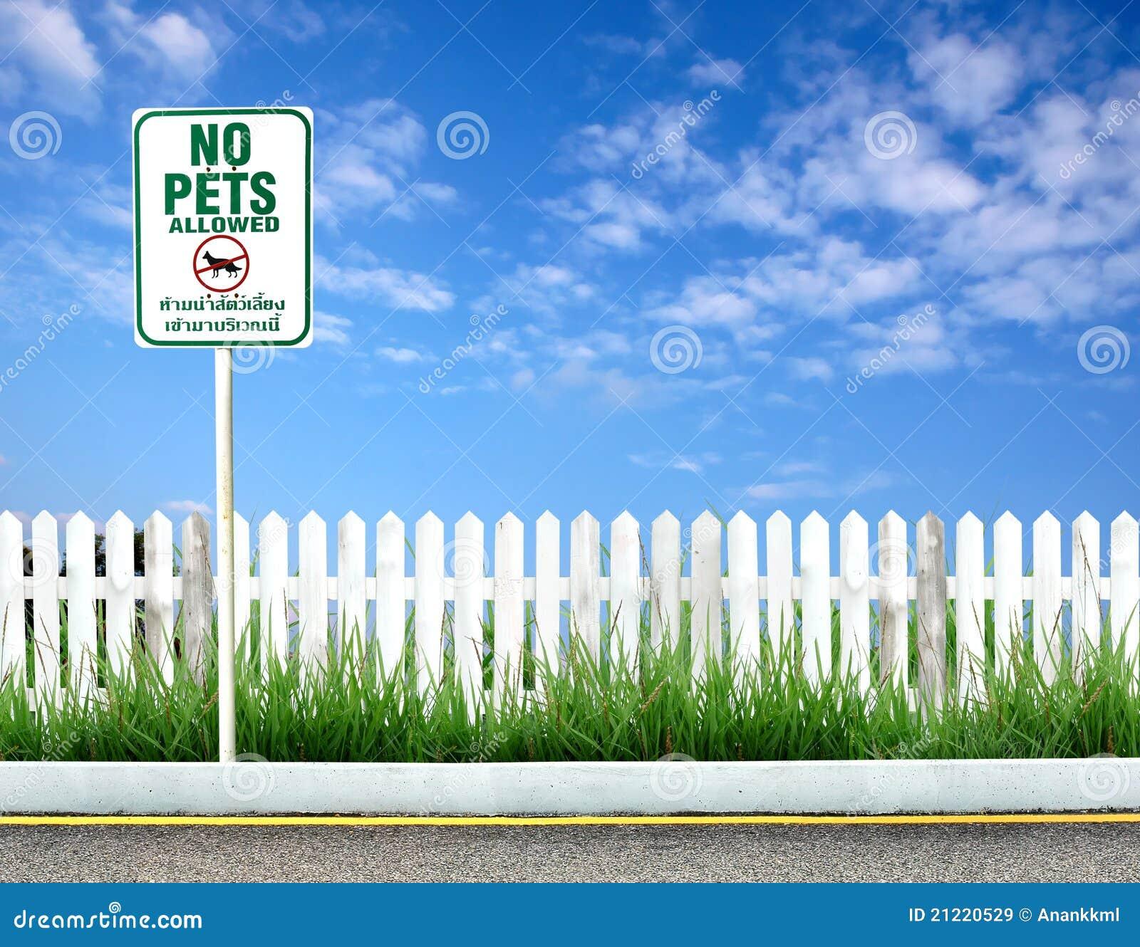 No pets allowed sign board mr no pr no 2 714 3