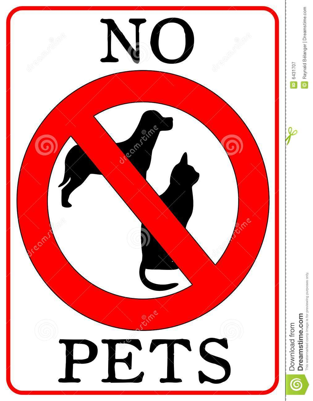 No pets sign isolated in white mr no pr no 3 5114 7