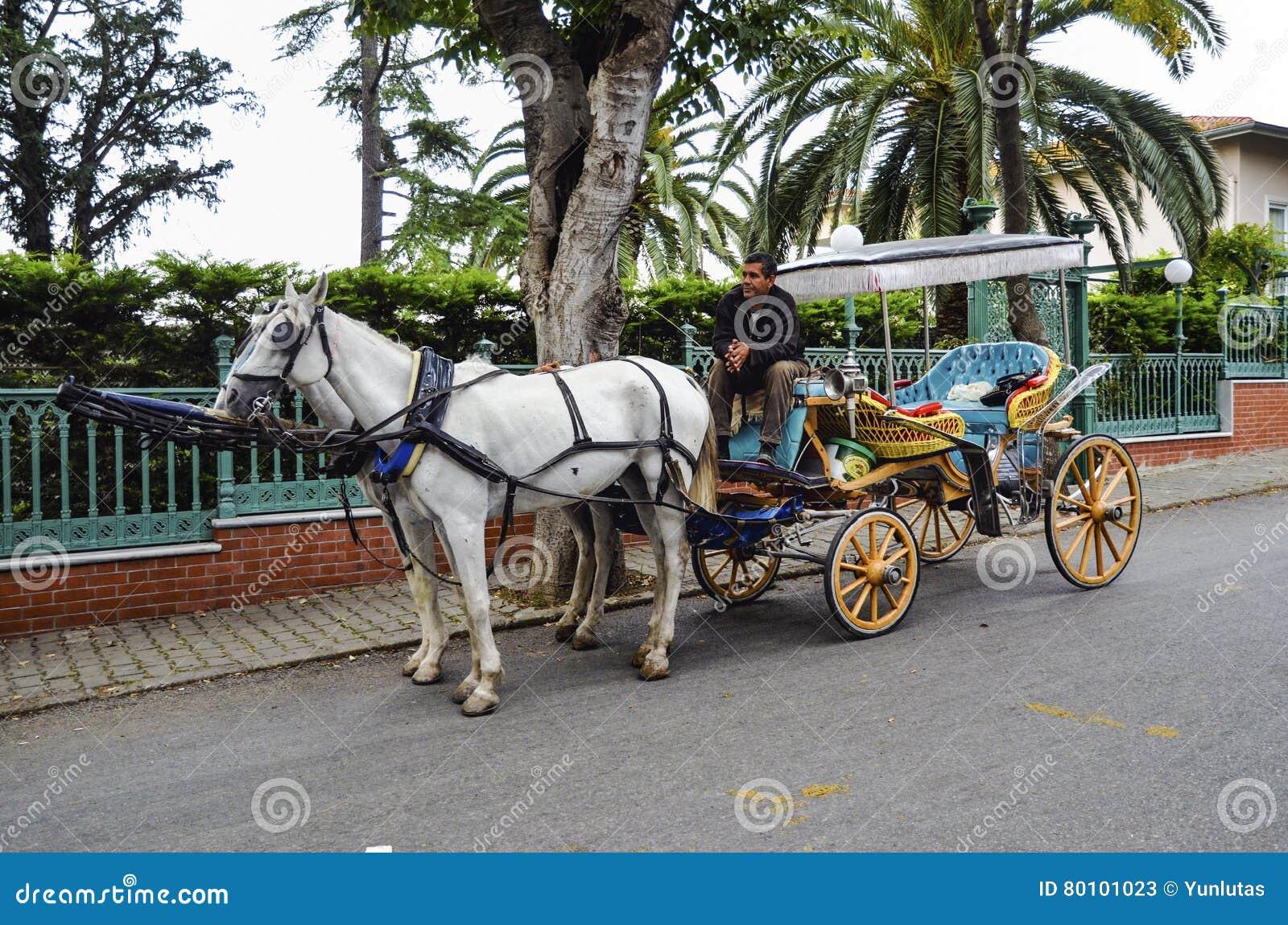 No Phaeton de Buyukada da queda Transporte do cavalo
