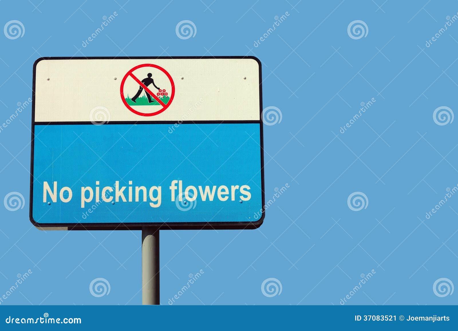 no picking flowers stock image image 37083521