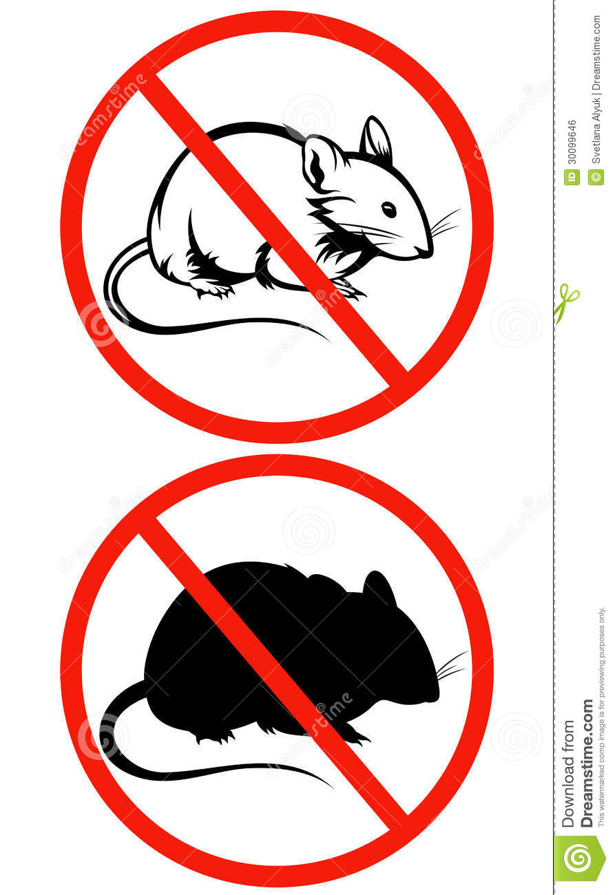 No Rodents Vector Sign Royalty Free Stock Image - Image ... Raccoon Face Clip Art