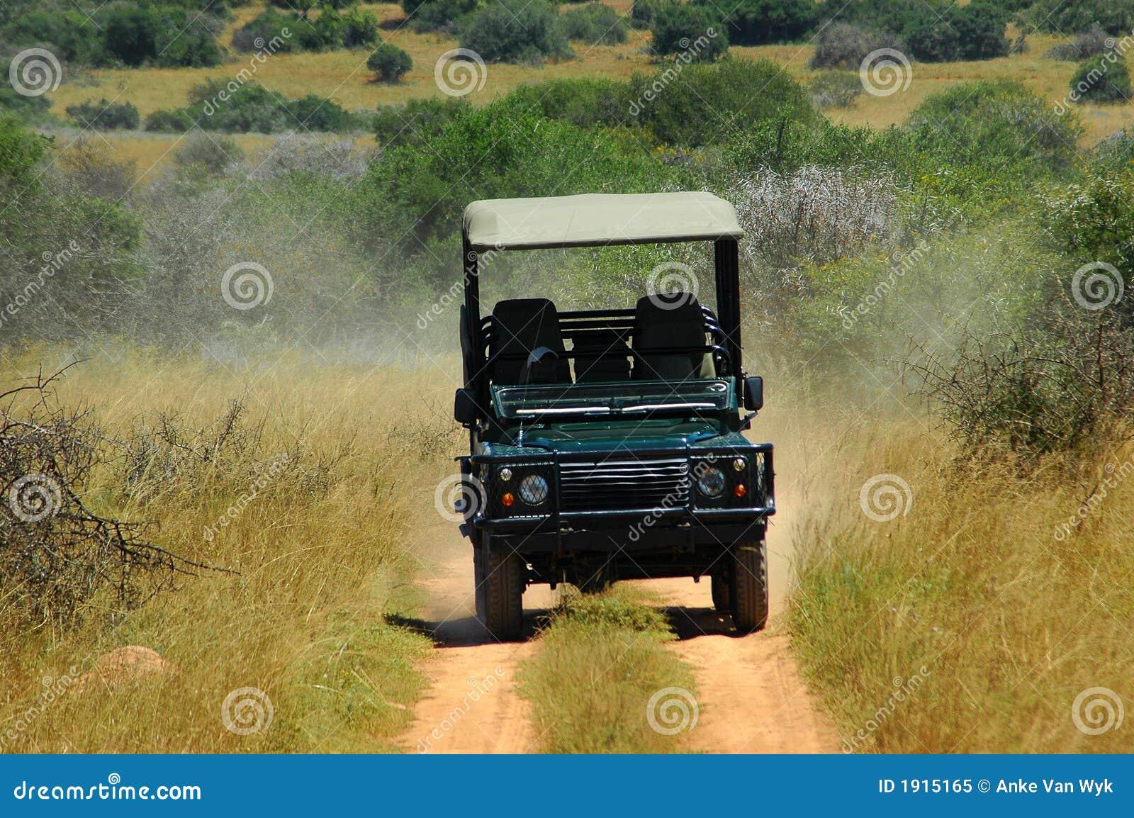 No safari em África
