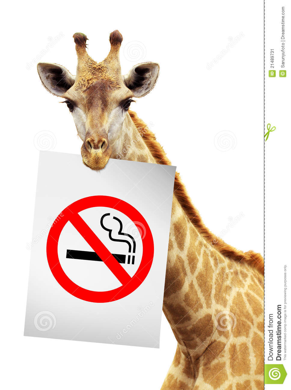 essay on no smoking no smoking logo