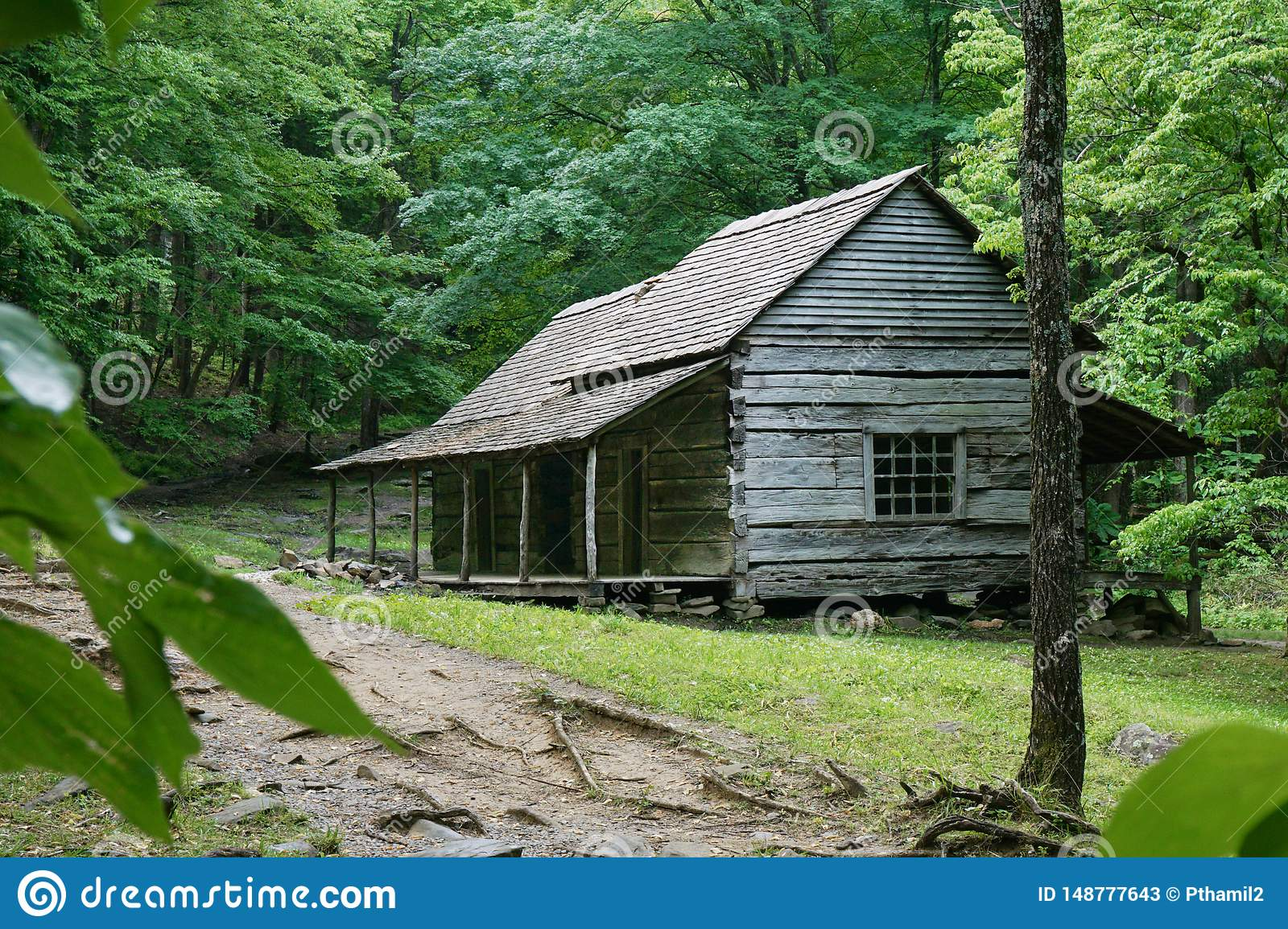 A log cabin in the Great Smoky Mountain National Park in Tennessee USA.  Noah `Bud` Ogle cabin built circa 1890.