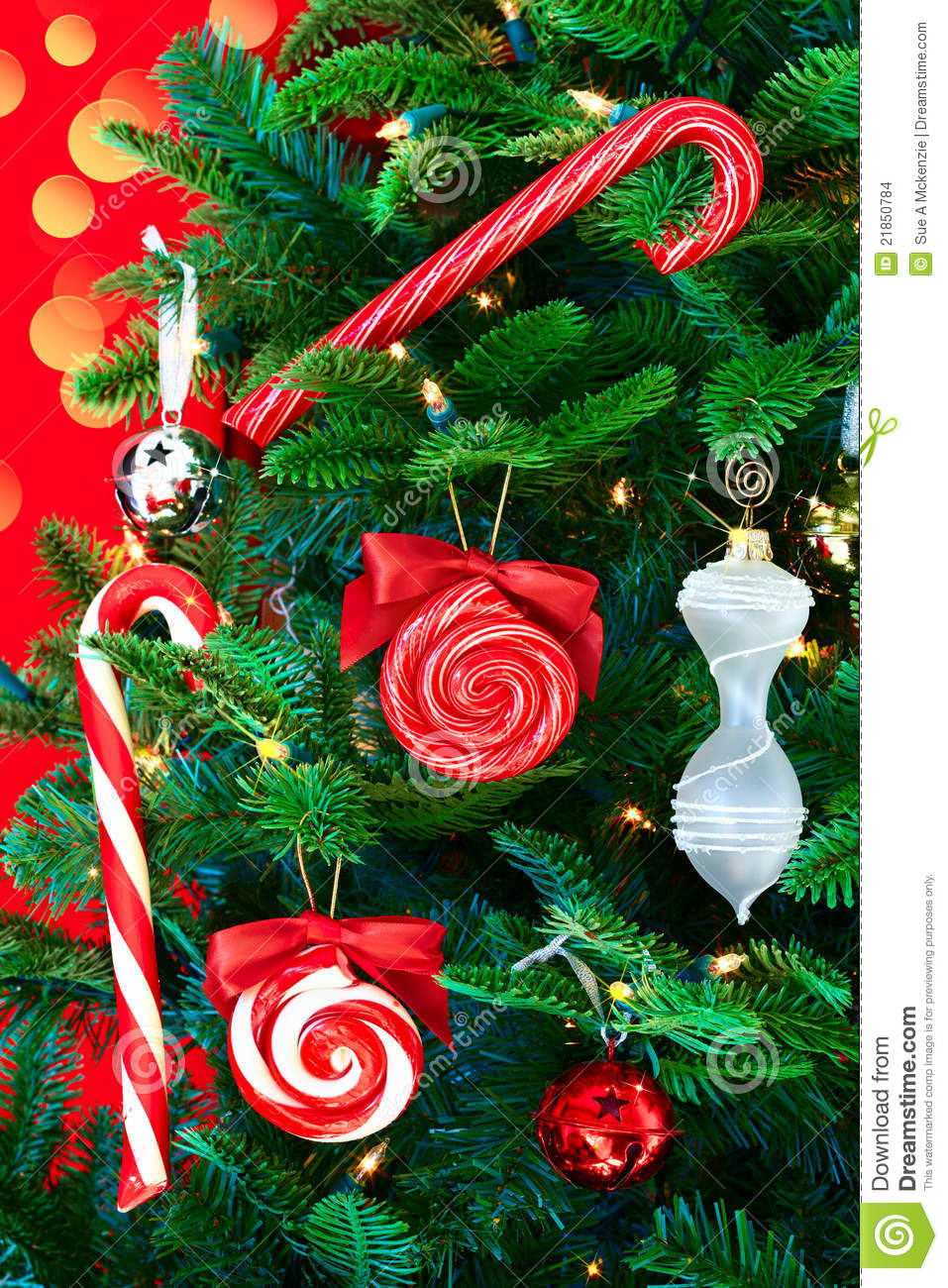 Noble Pine Christmas Tree With Candy Canes Stock Images ...