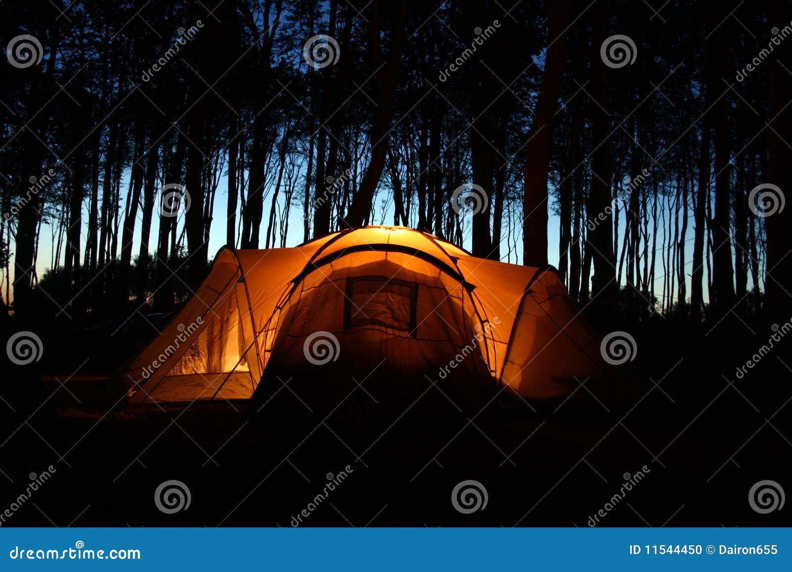 Noc lasowy namiot