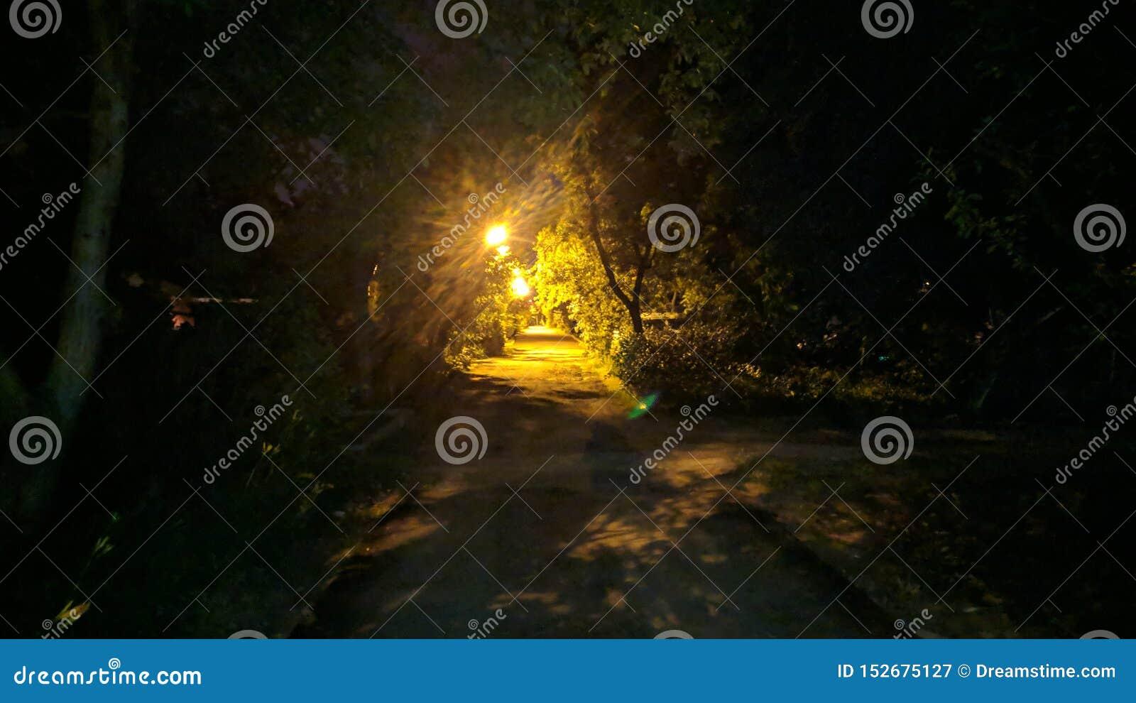 Noc na ulicie