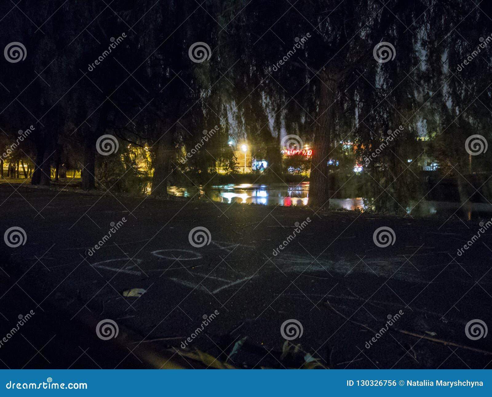 Noc park z stawem Krajobraz z rozjarzeni lampiony i gałąź