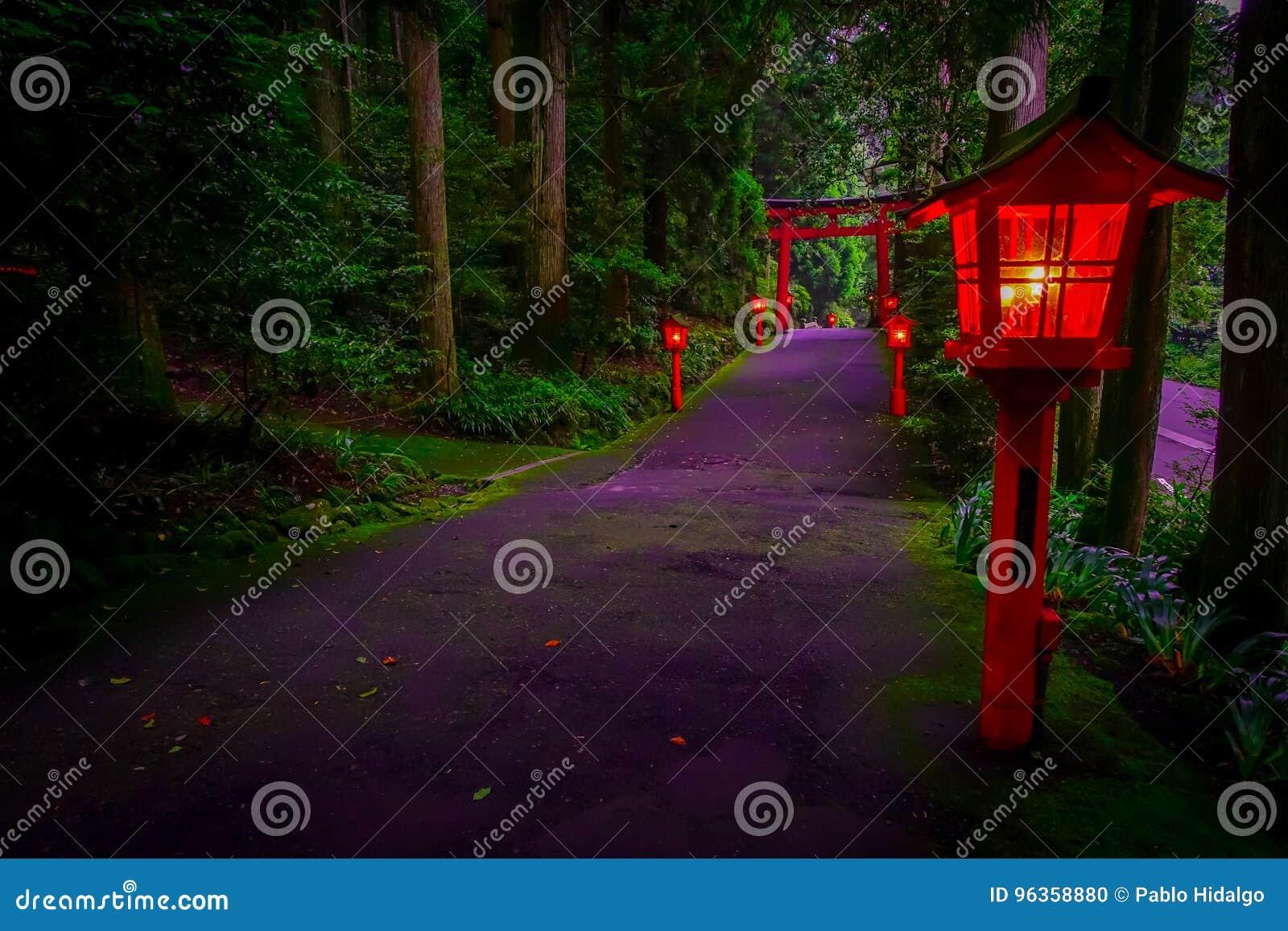 Noc widok podejście Hakone świątynia w cedrowym lesie Z wiele czerwony lampion zaświecający up i wielka czerwień