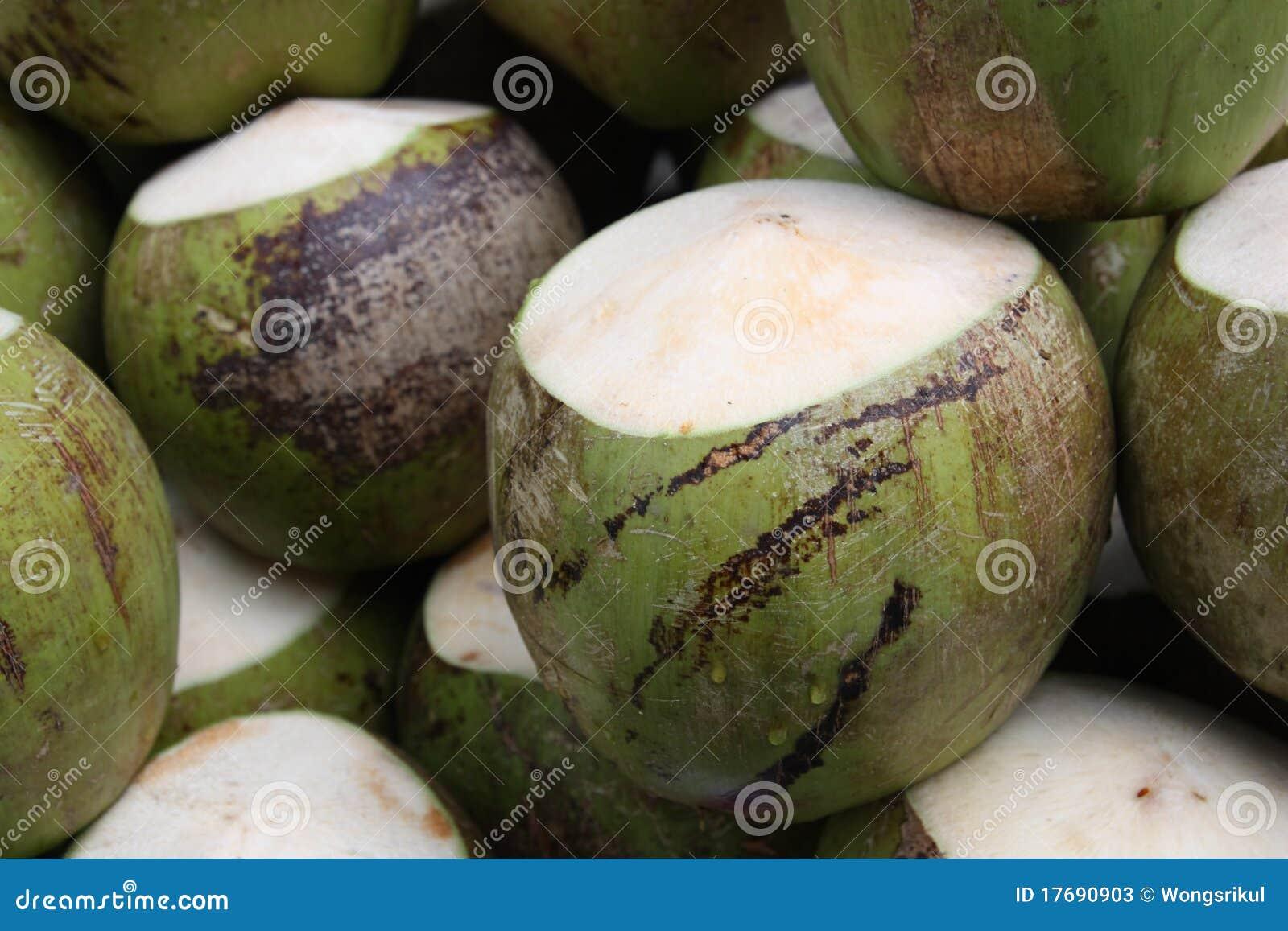 Noce di cocco immagine stock immagine di pianta sano for Pianta di cocco