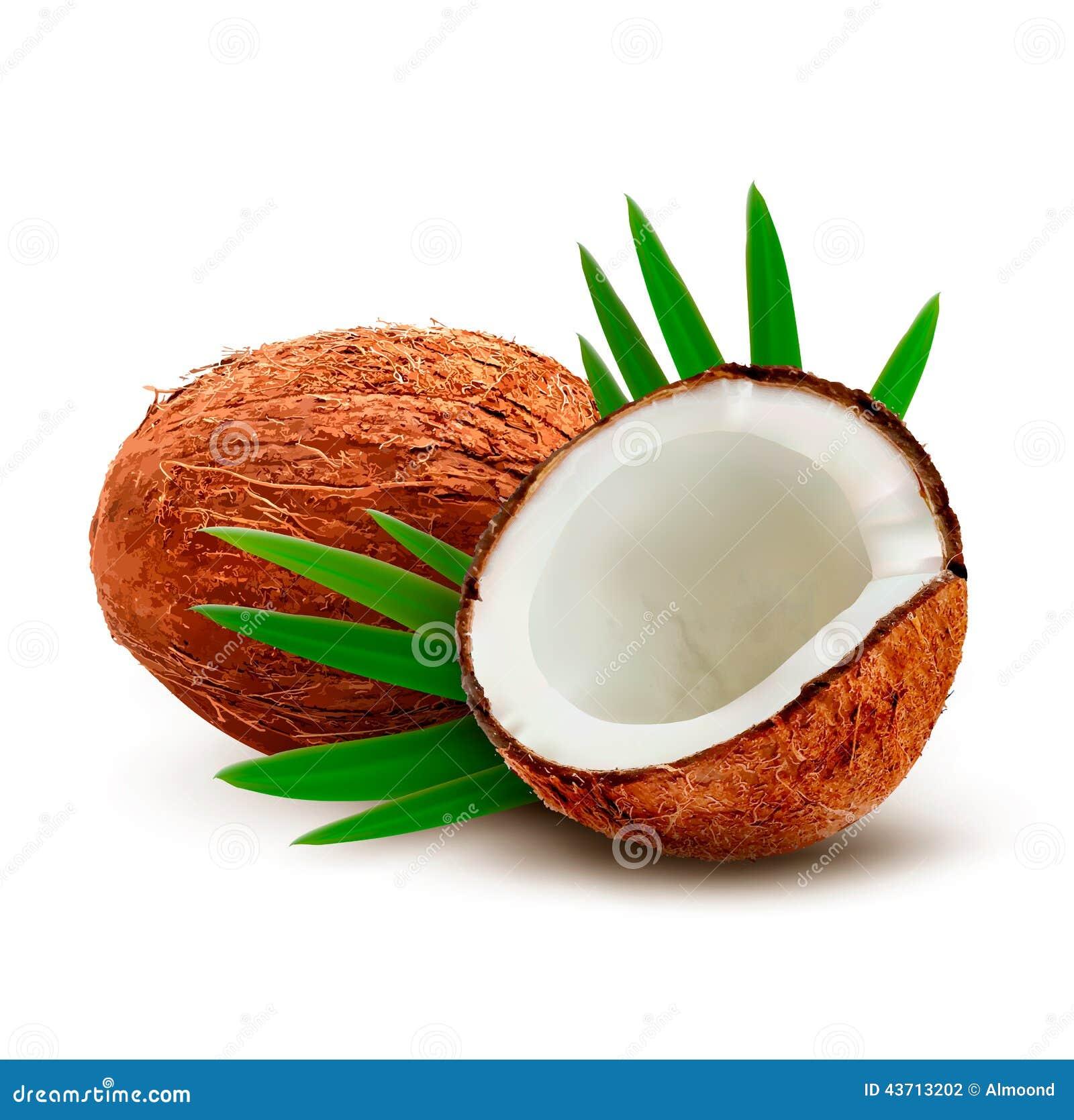 Noce di cocco con i fogli