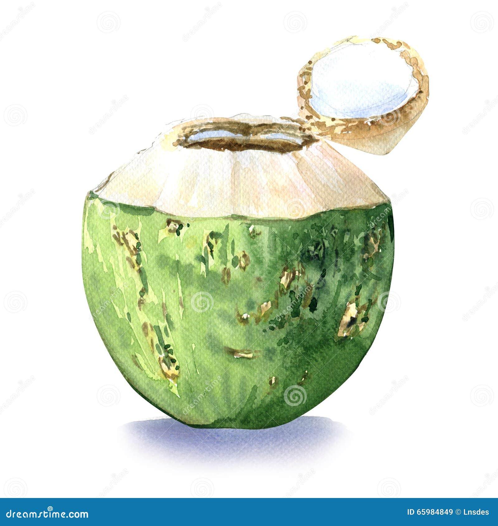Noce di cocco verde, bevanda dell acqua