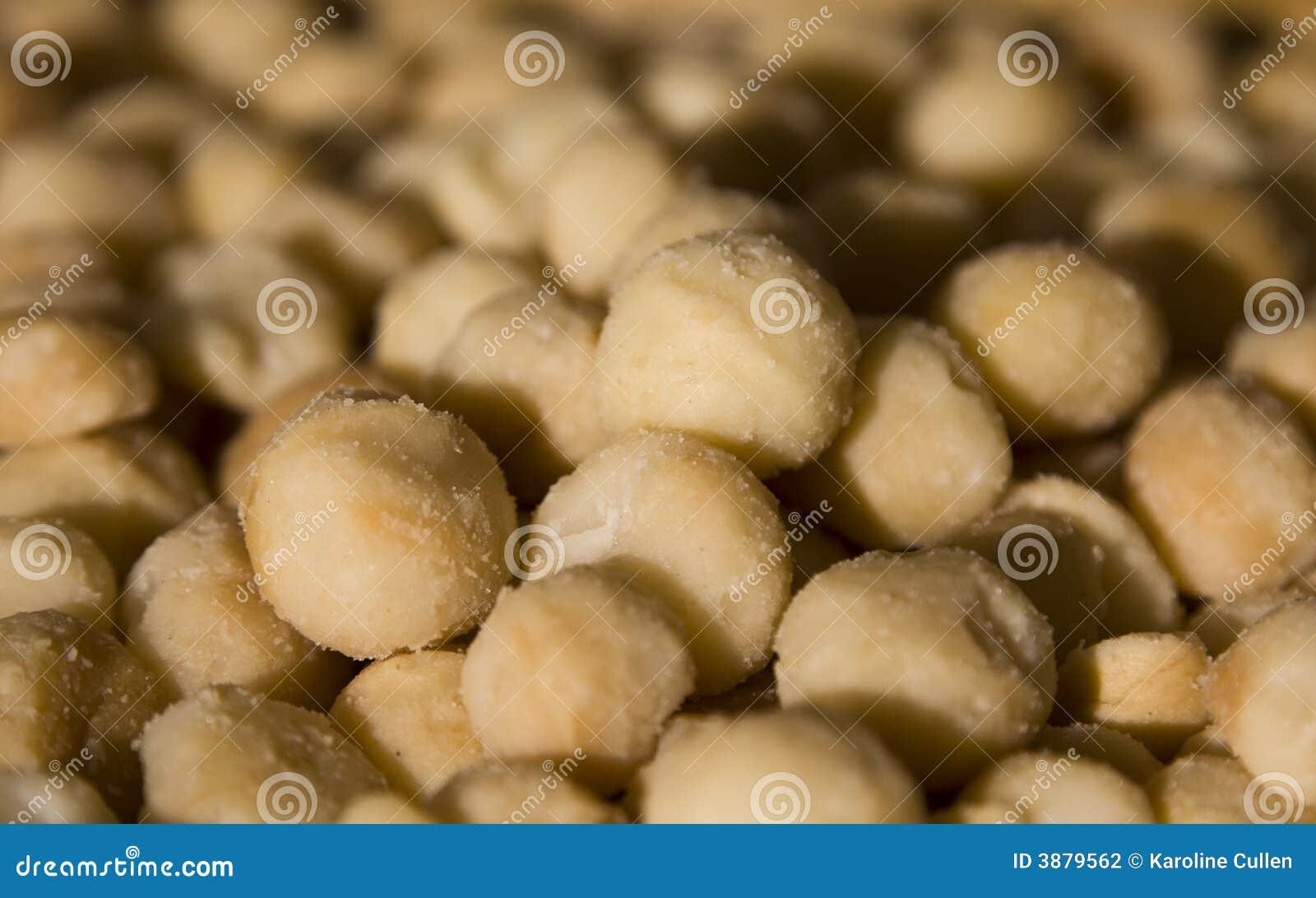 Noci di noce di macadamia