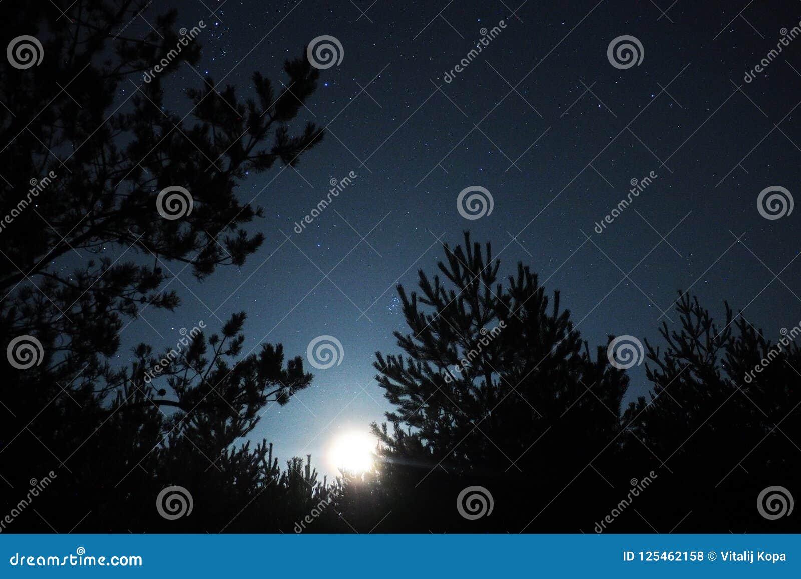 Nocne niebo gwiazdy, księżyc światło i Pleiades obserwować,