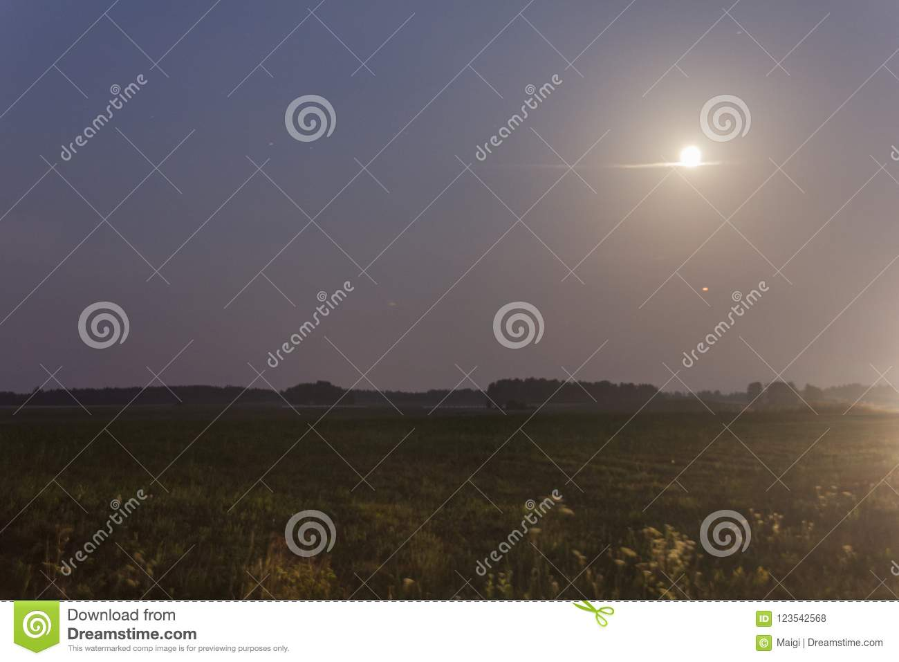 Download Nocturnal Landscape In The Moonlight Stock Photo - Image of moon, lunar: 123542568