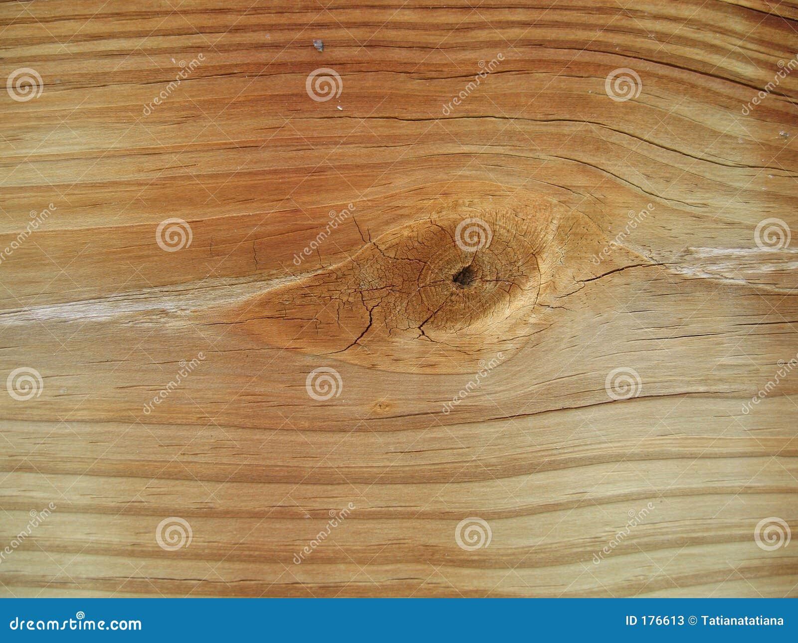 Nodo nell estratto di legno