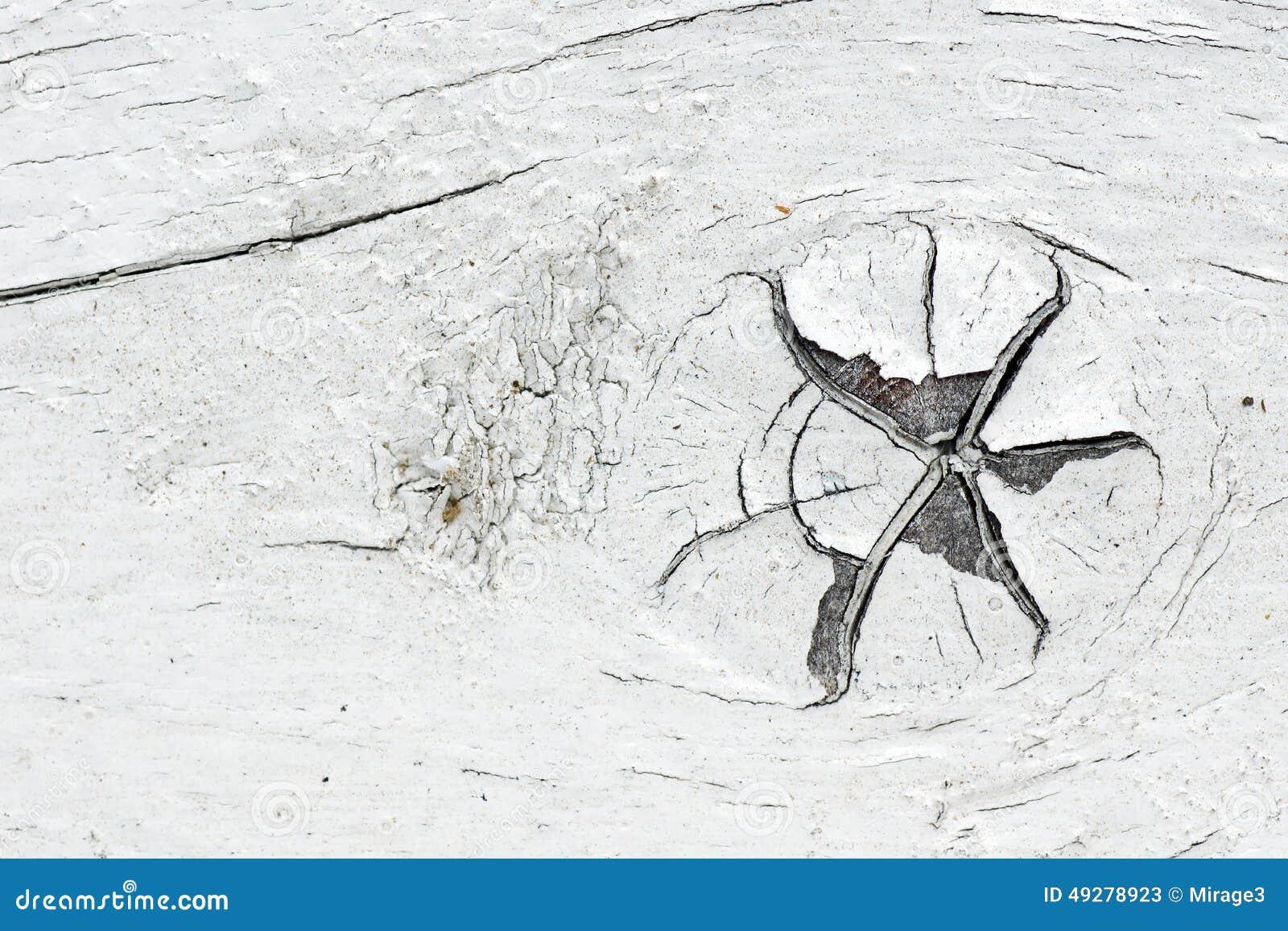 Noeud sur le vieux bois blanc de peinture photo stock - Peinture effet vieux bois ...