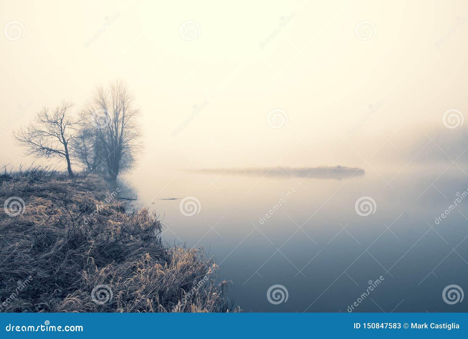 Nog water en kust met leafless bomen en mist duistere horizon; koele tonen; exemplaarruimte